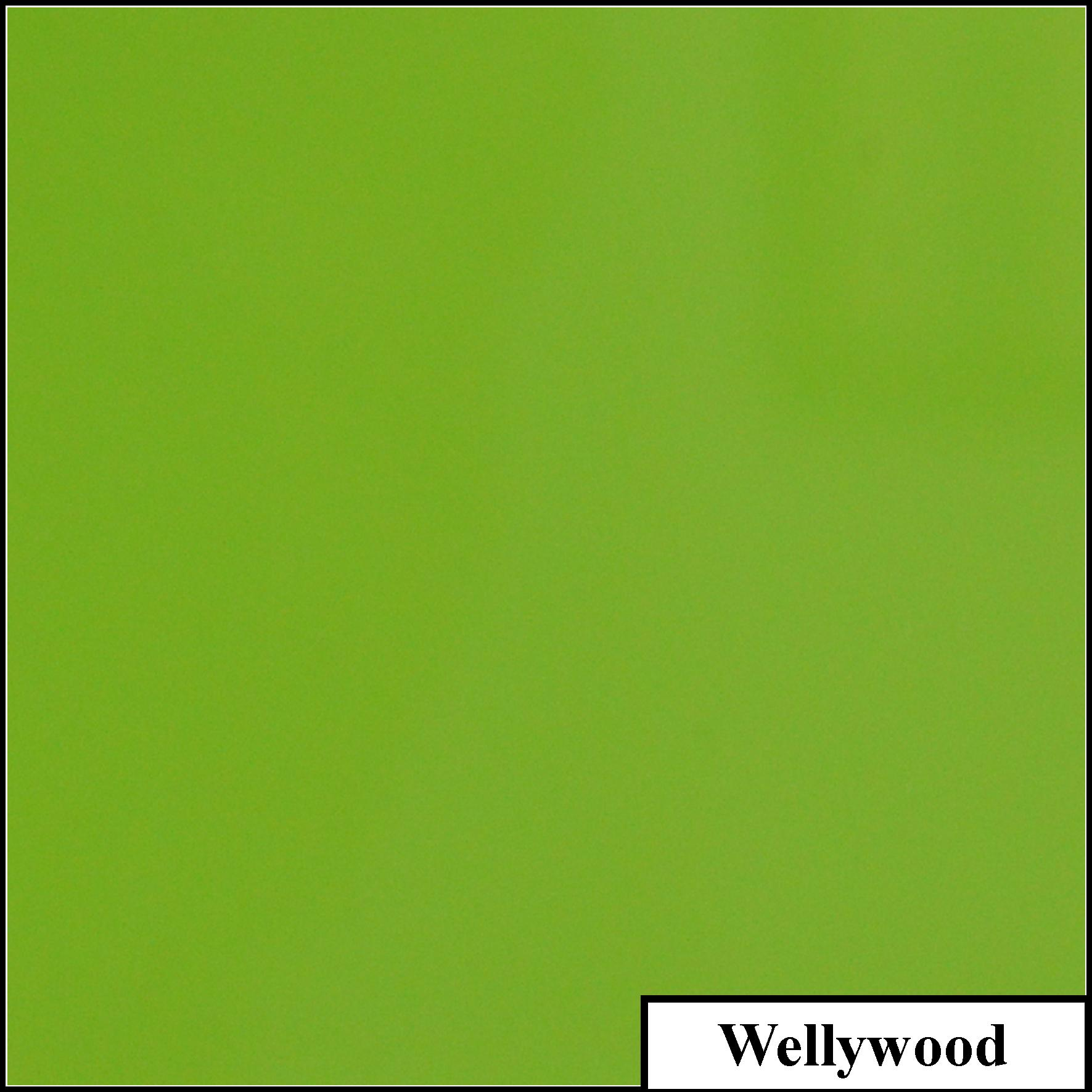 Wellywood.jpg