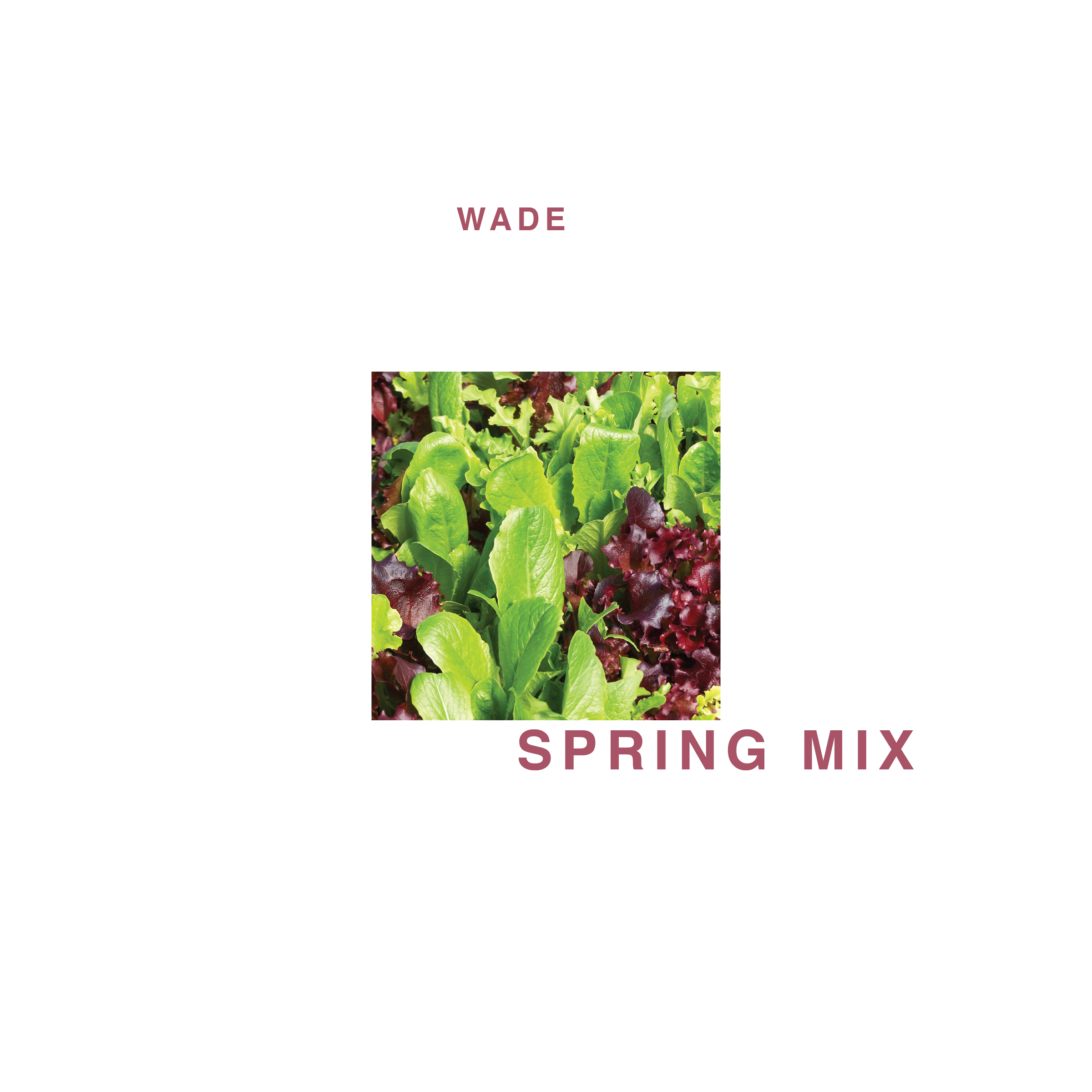 wade - spring mix