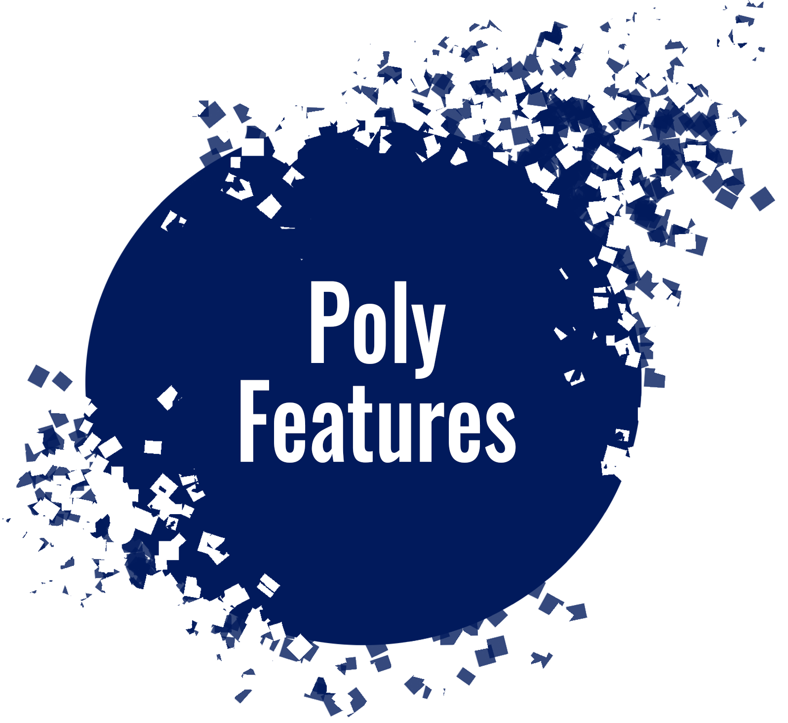 Poly Features circle