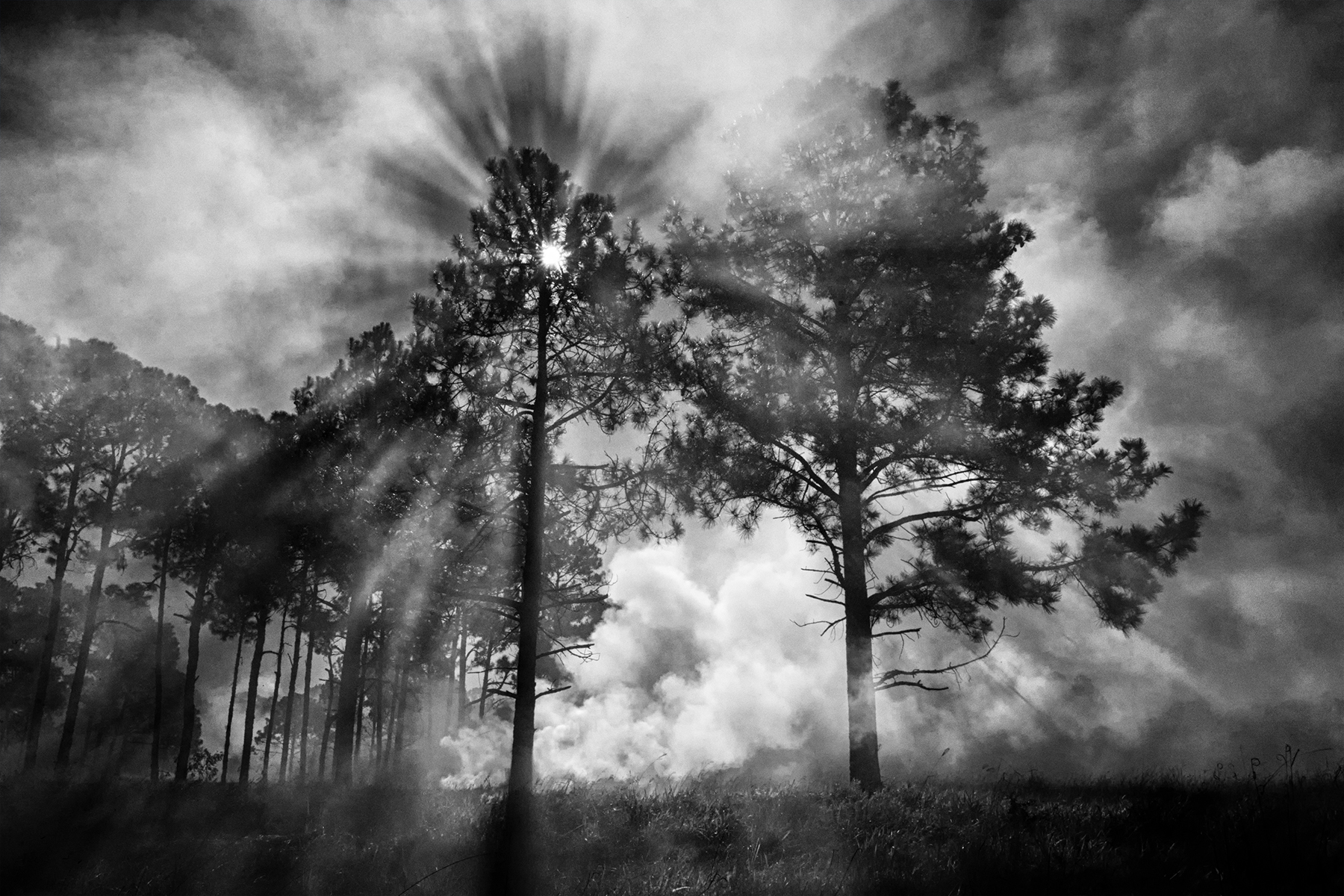 Breaking Through The Smoke