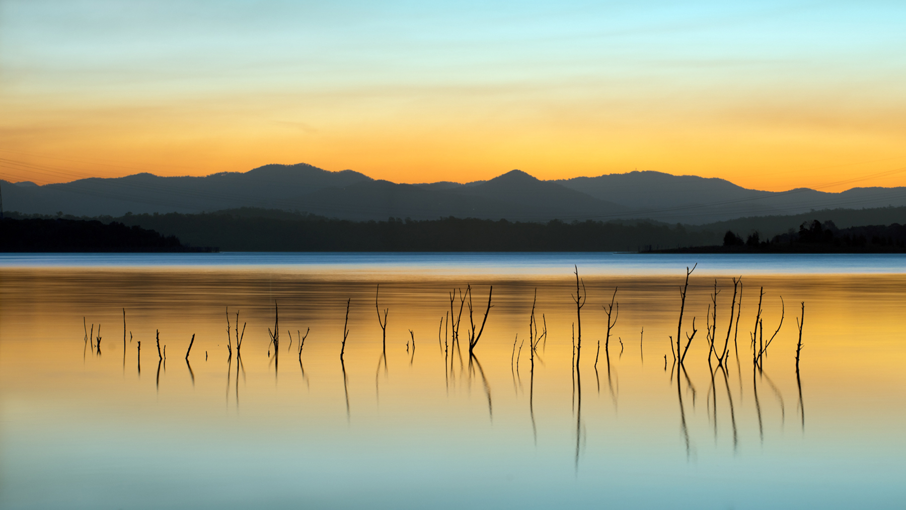 Lake Sticks by Shane Spoor