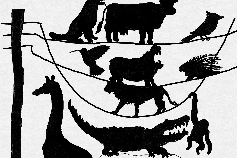 Arts Camp 2017 Animal Logo.png
