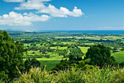 View over Byron Bay