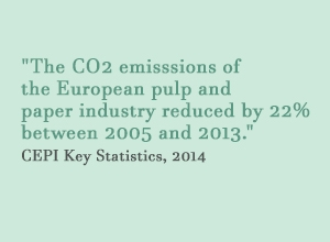 The CO2 emisssions of the European pulp and paper industry reduced by 22 per cent between 2005 and 2013..JPG