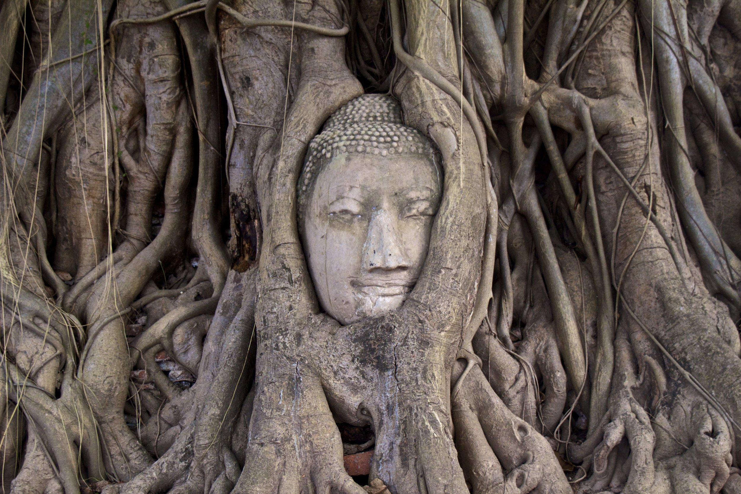 ayutthaya ancient siamese city thailand 15.jpg
