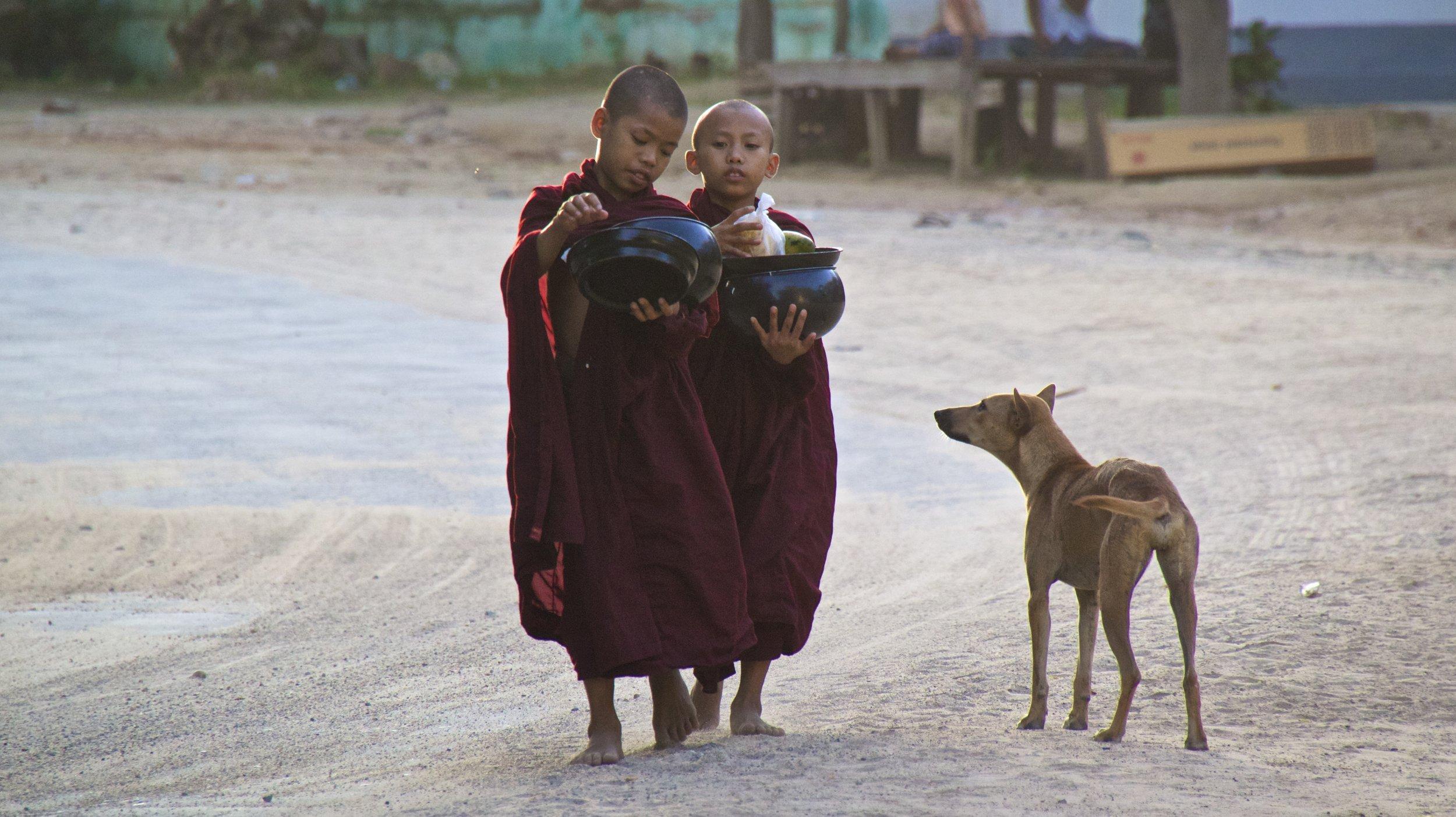 bagan burma myanmar buddhist monks alms 3.jpg