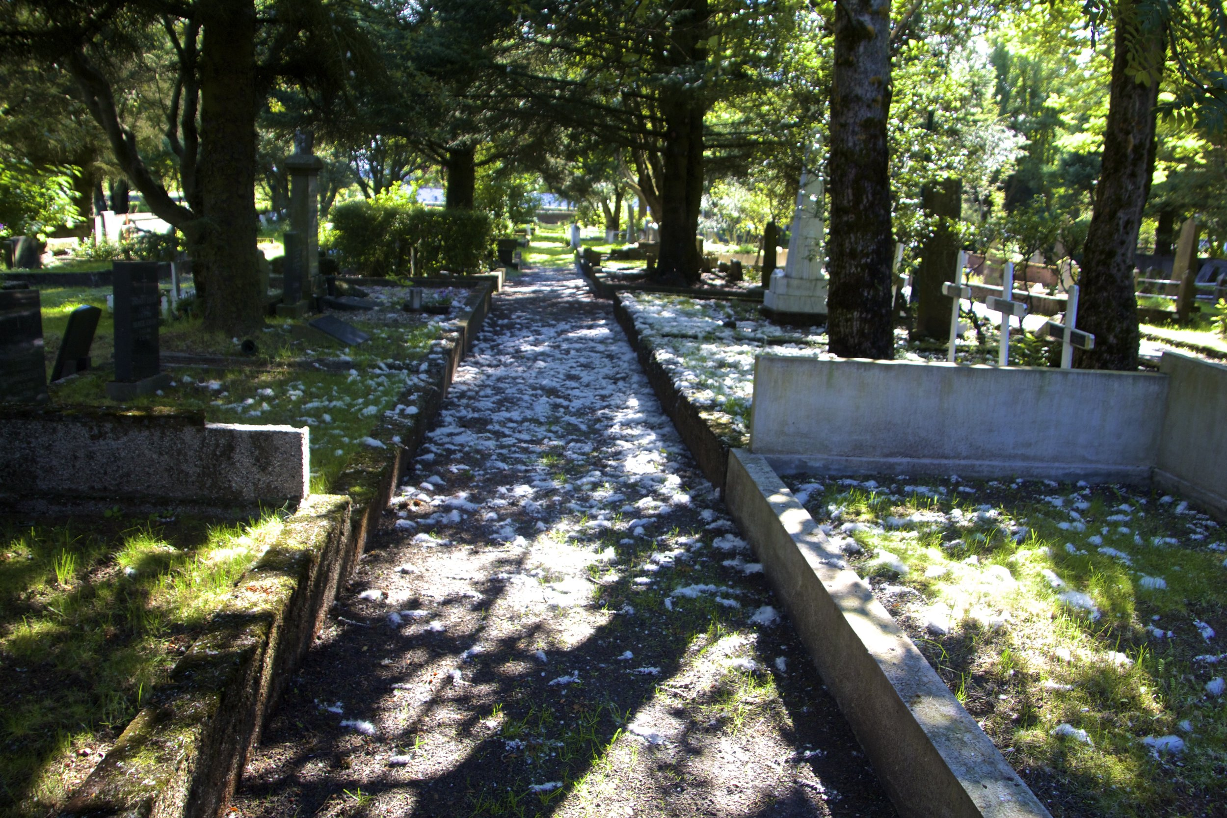 Hólavallagarður Cemetery Reykjavik 3.jpg