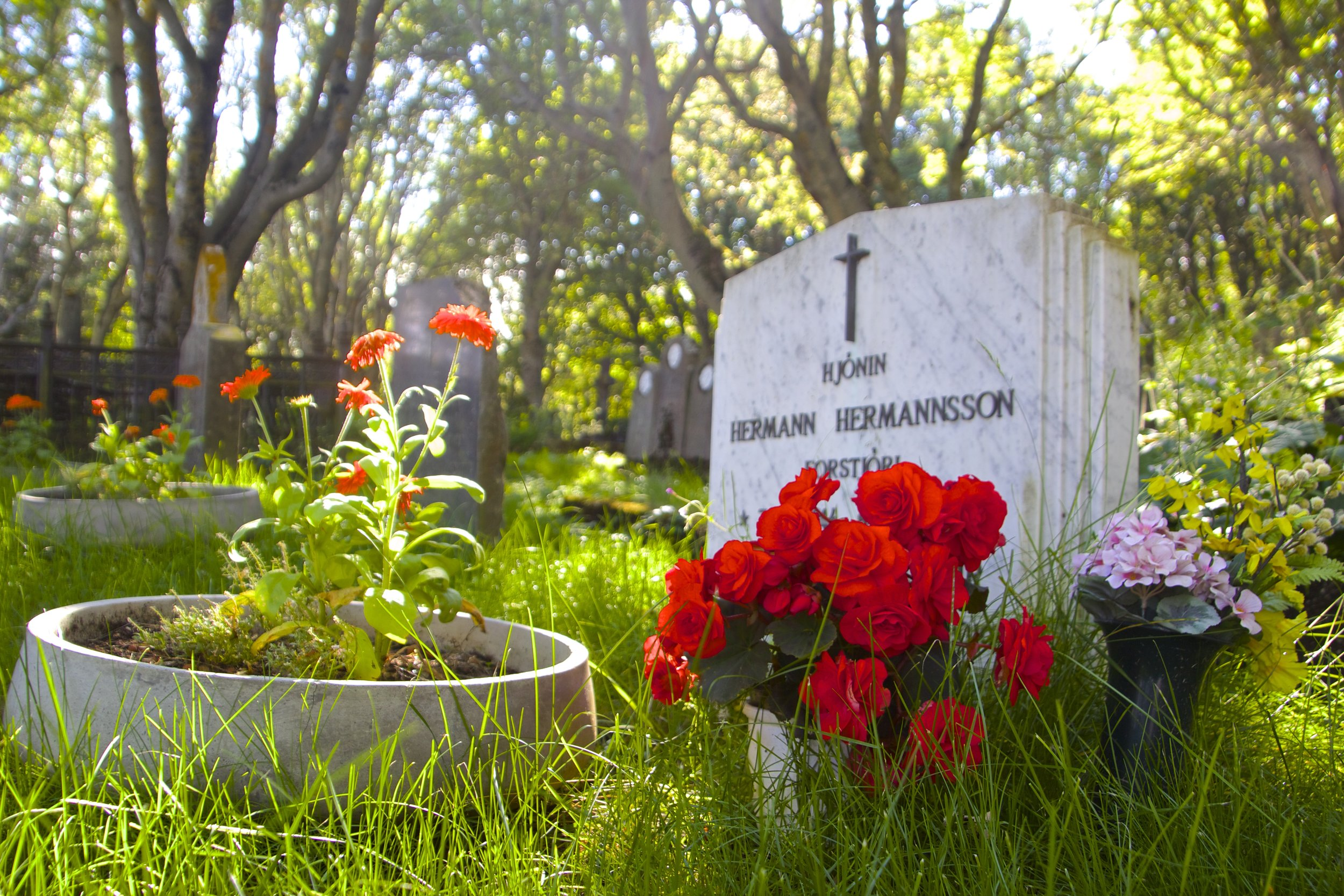 Hólavallagarður Cemetery Reykjavik 9.jpg