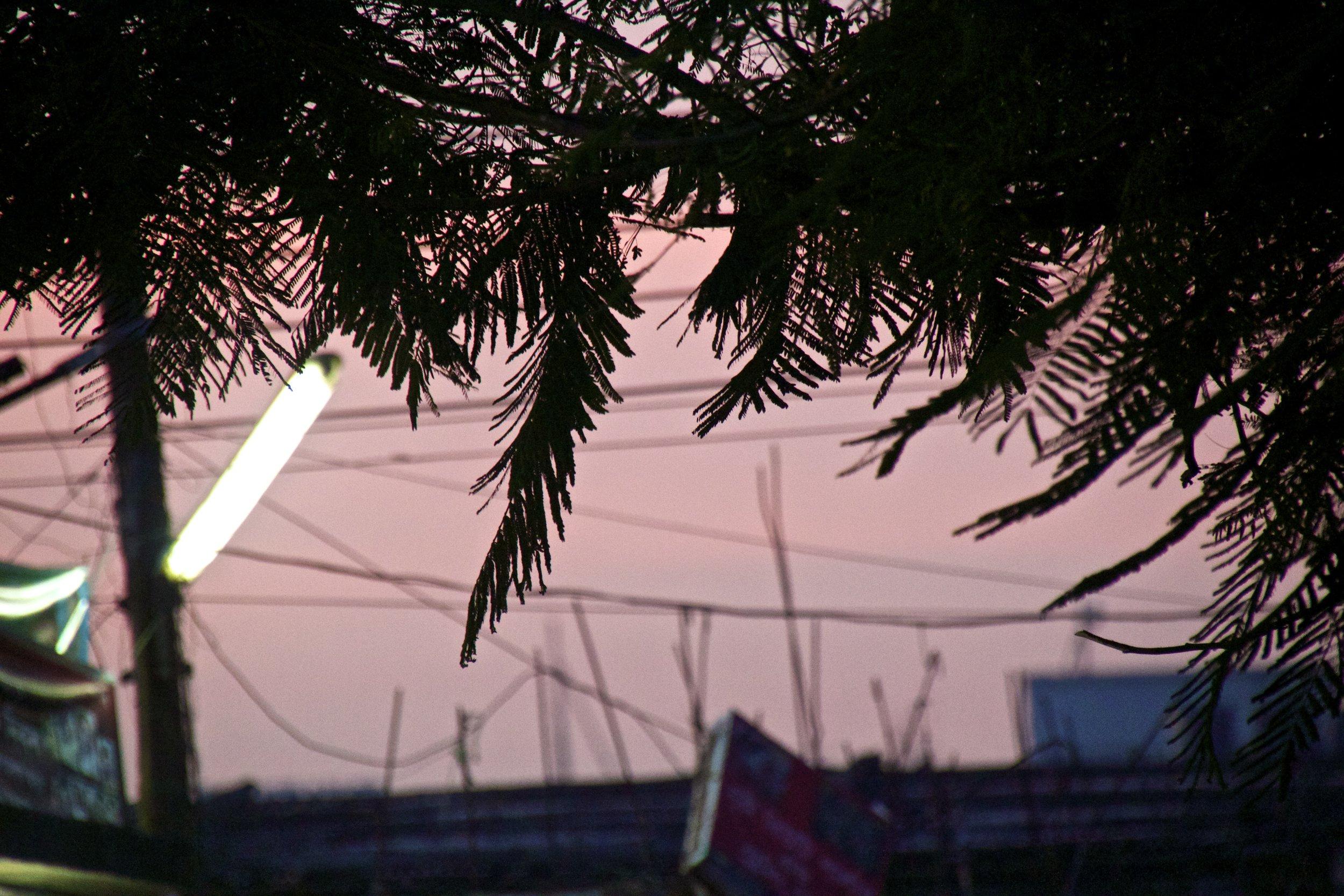 rayer bazar dhaka slums sunset 8.jpg