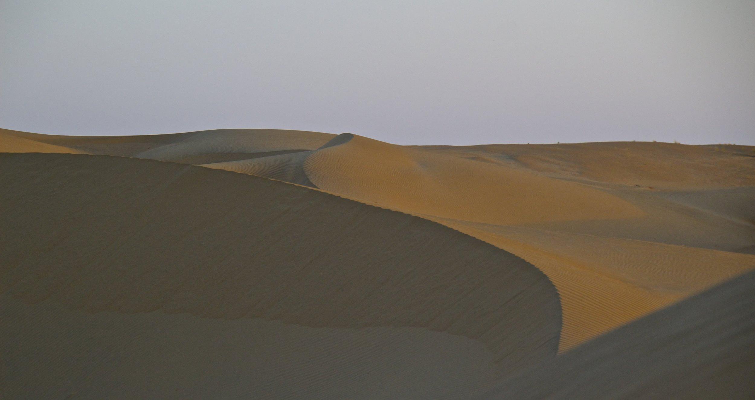 thar desert dunes rajasthan india photography camel safari 5.jpg