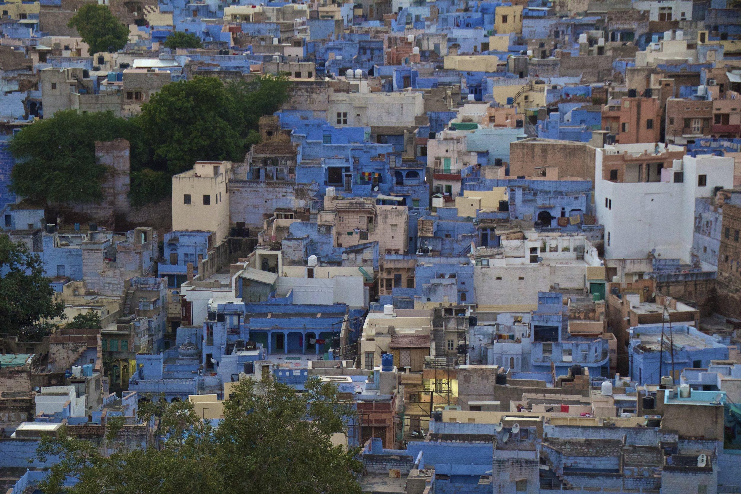 blue city photography jodhpur rajasthan india 29.jpg