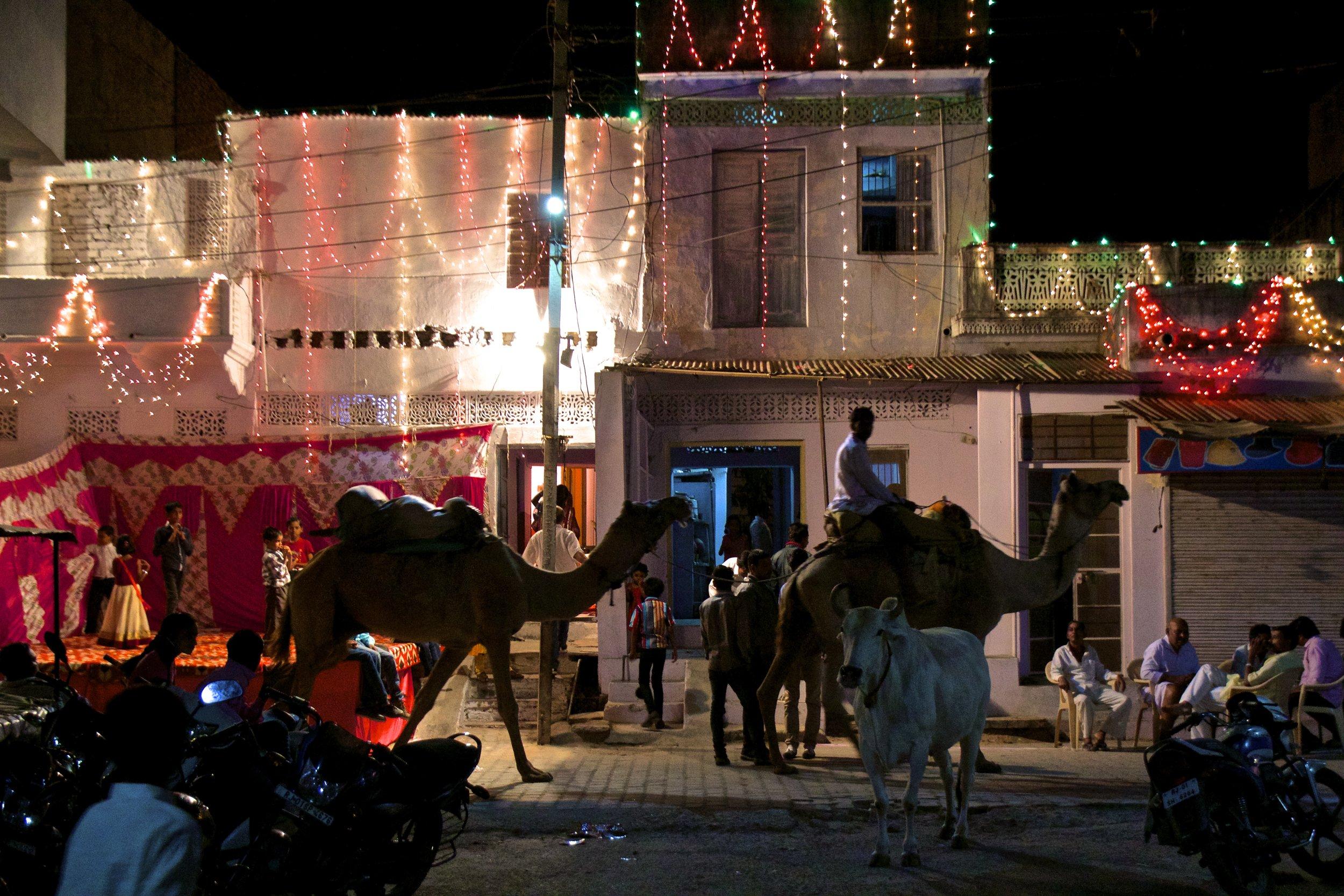 pushkar rajasthan rajasthani wedding 1.jpg