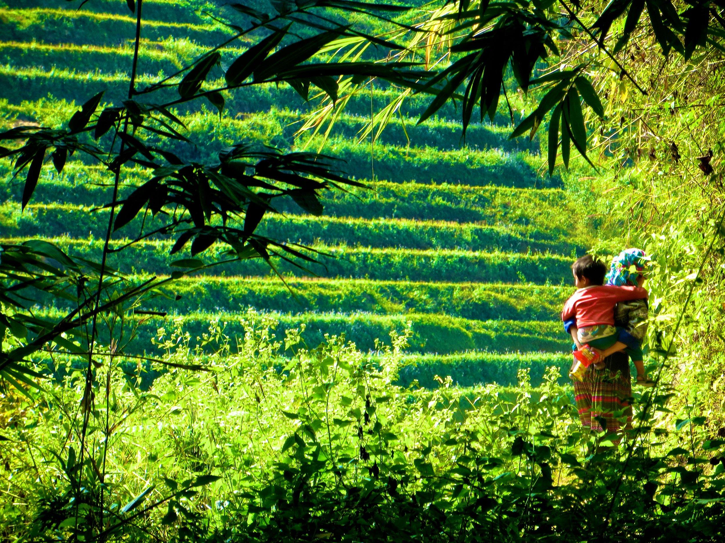yen bai province hmong people vietnam 10.JPG