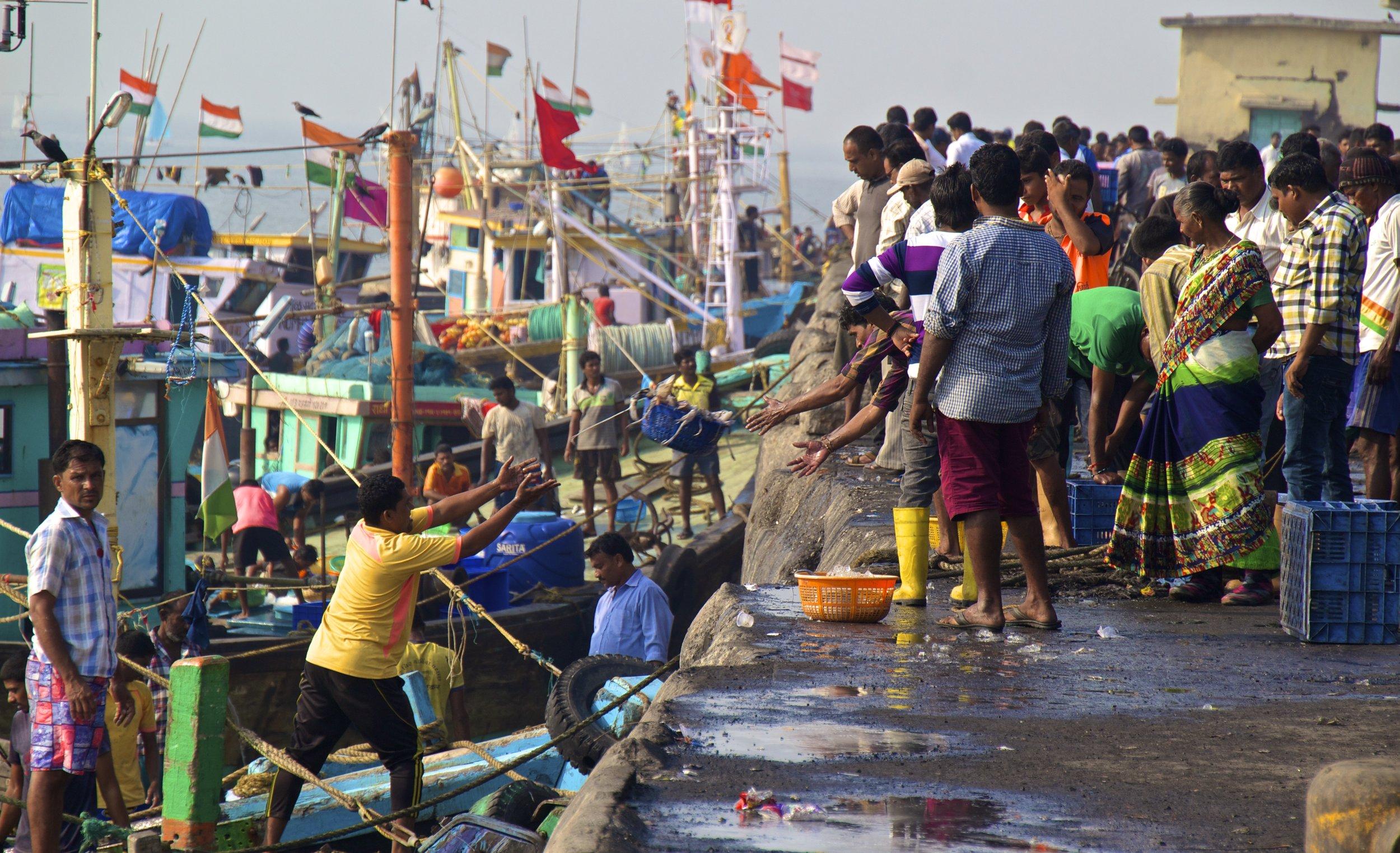 sassoon docks mumbai bombay photography 16.jpg