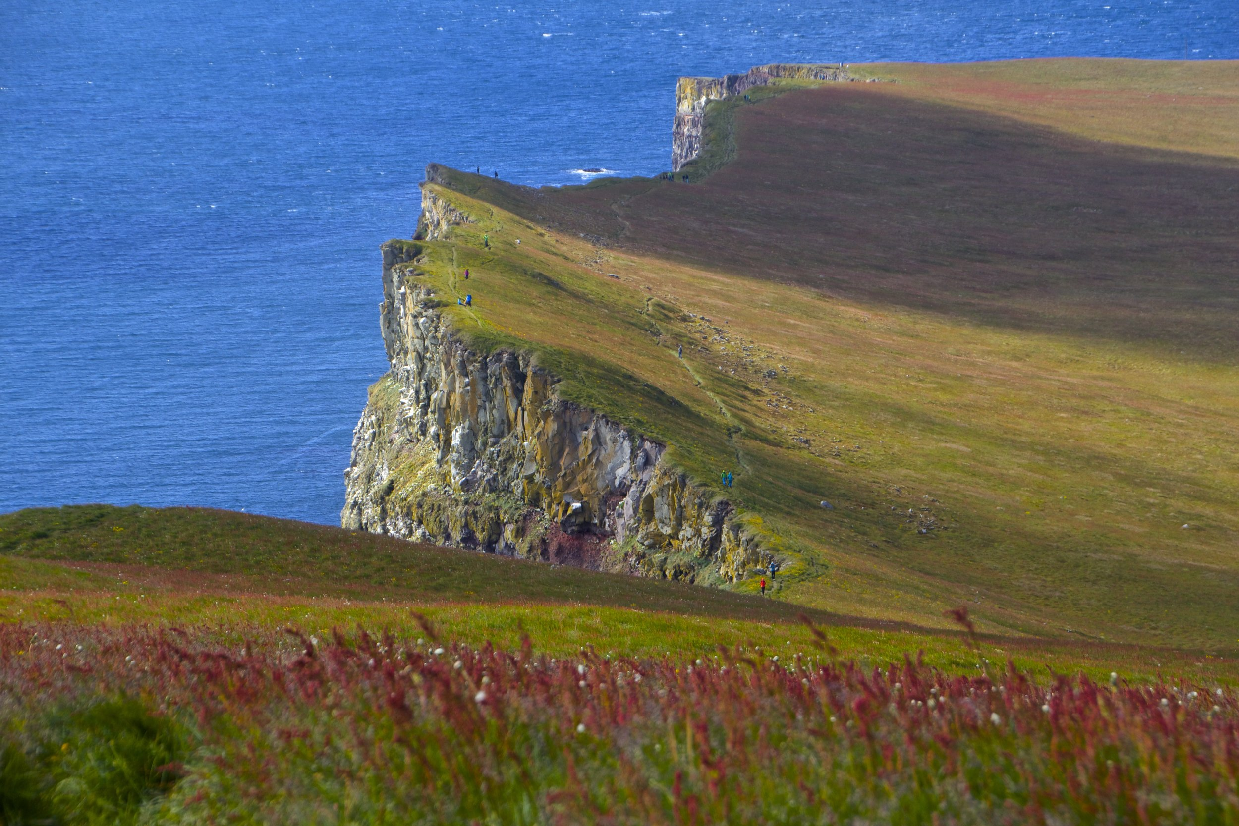 latrabjarg-cliffs-iceland-15
