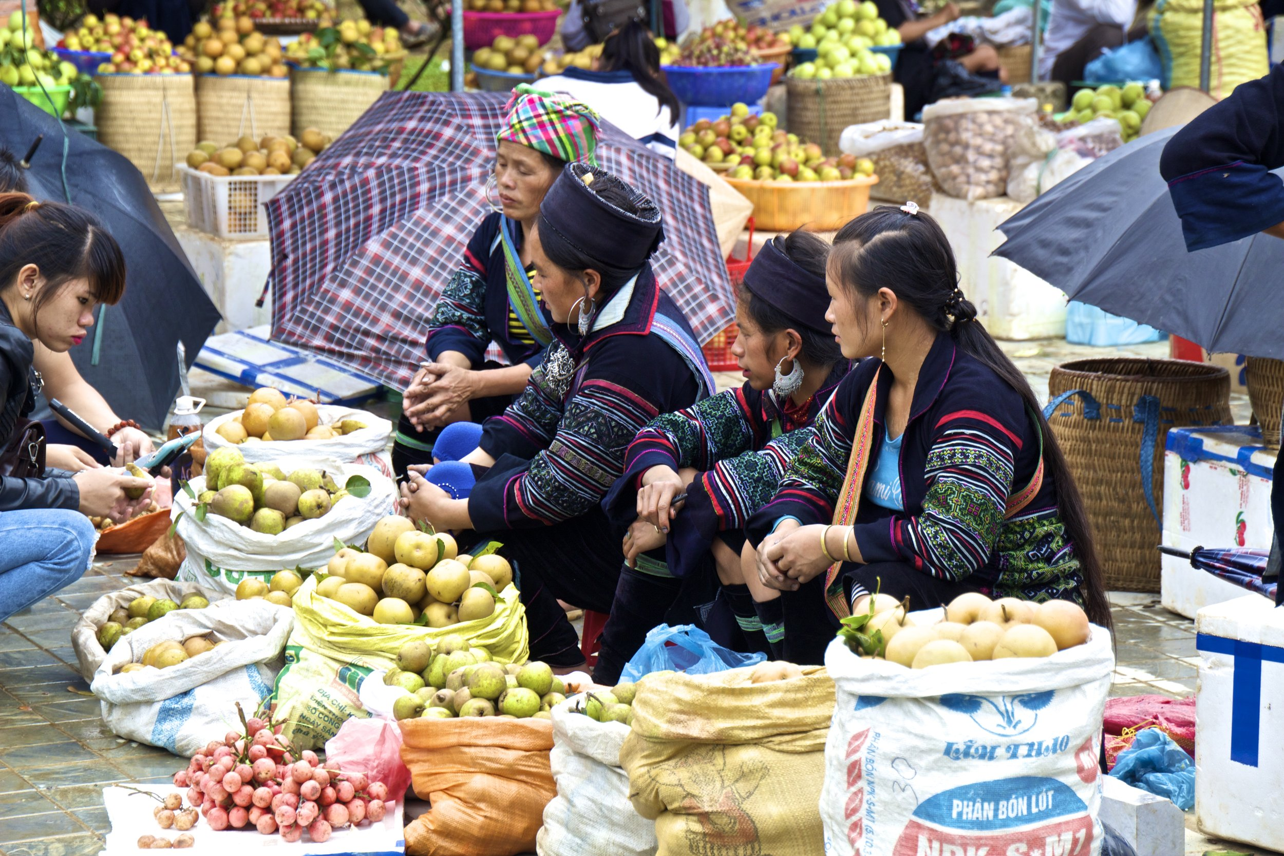 sa pa hmong girls vietnam 11.jpg