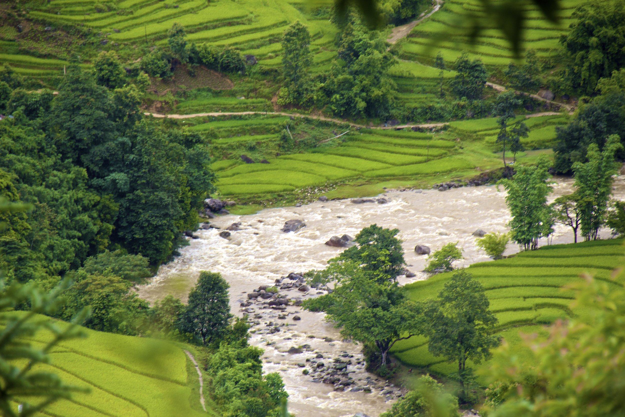 sa pa lao cai vietnam rice paddies 23.jpg