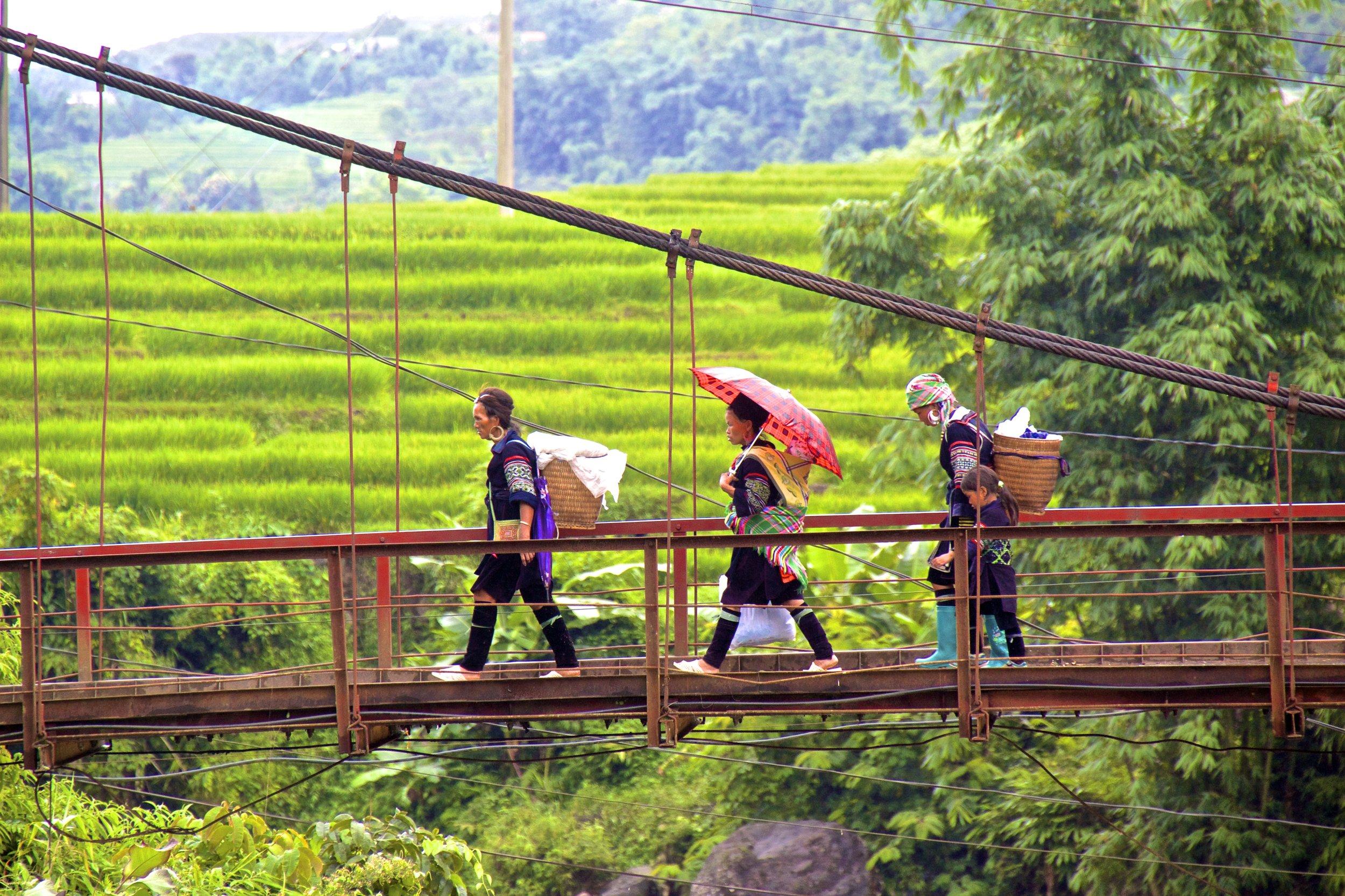 sa pa hmong people rice paddies 7.jpg