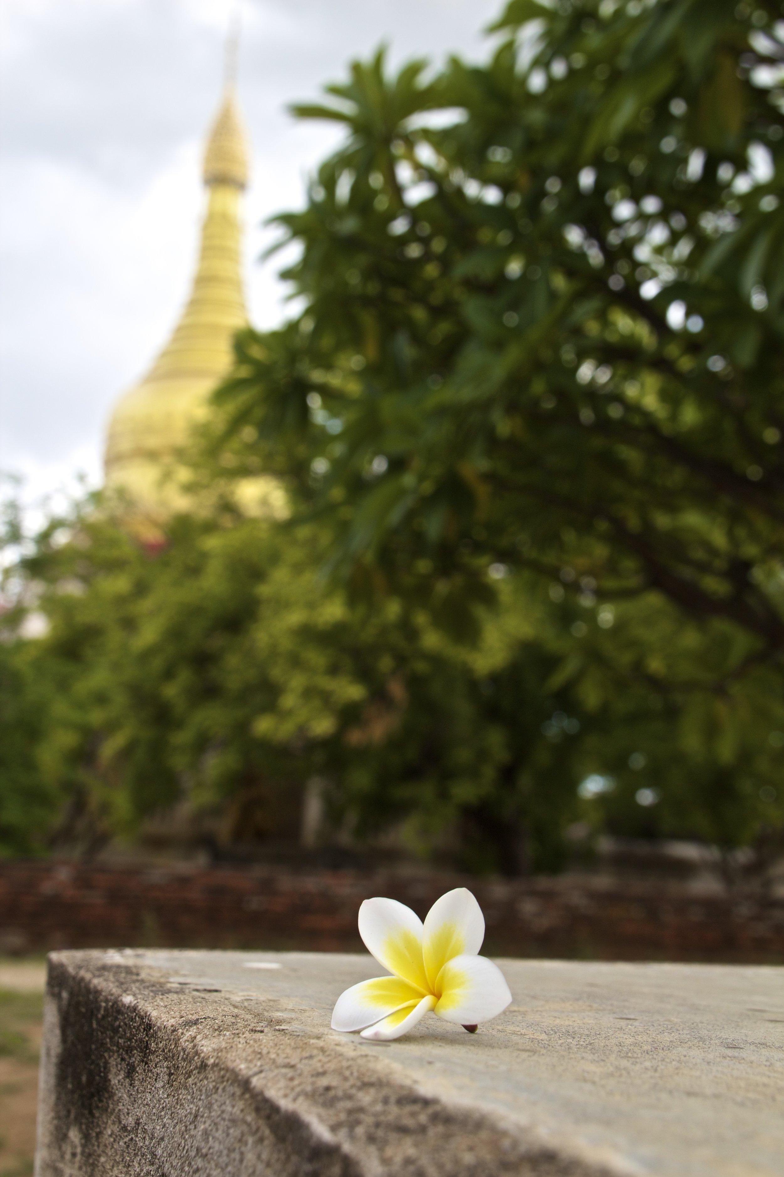 bagan burma myanmar buddhist temples 13.jpg