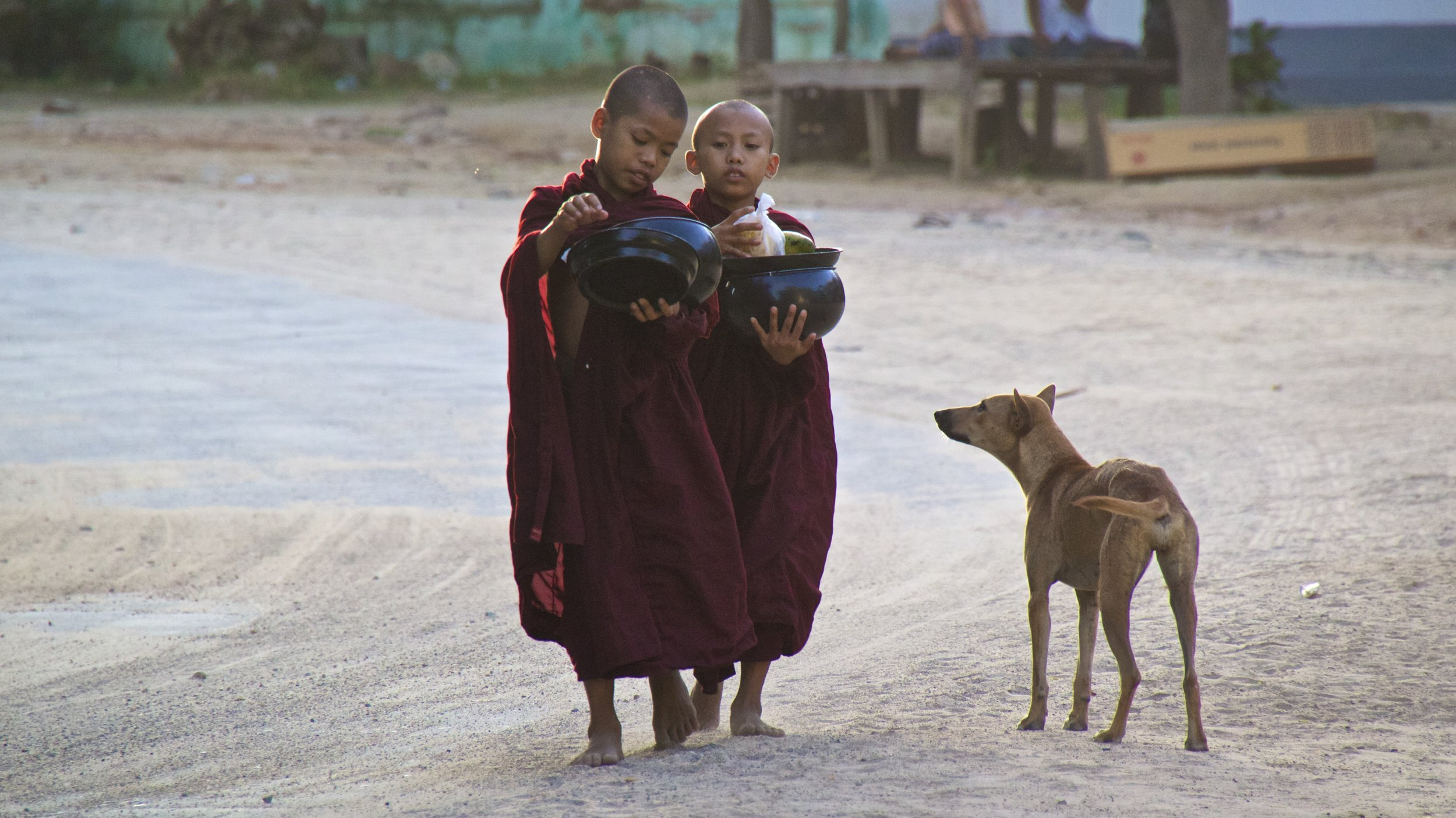 bagan burma myanmar buddhist monks alms 3.jpg