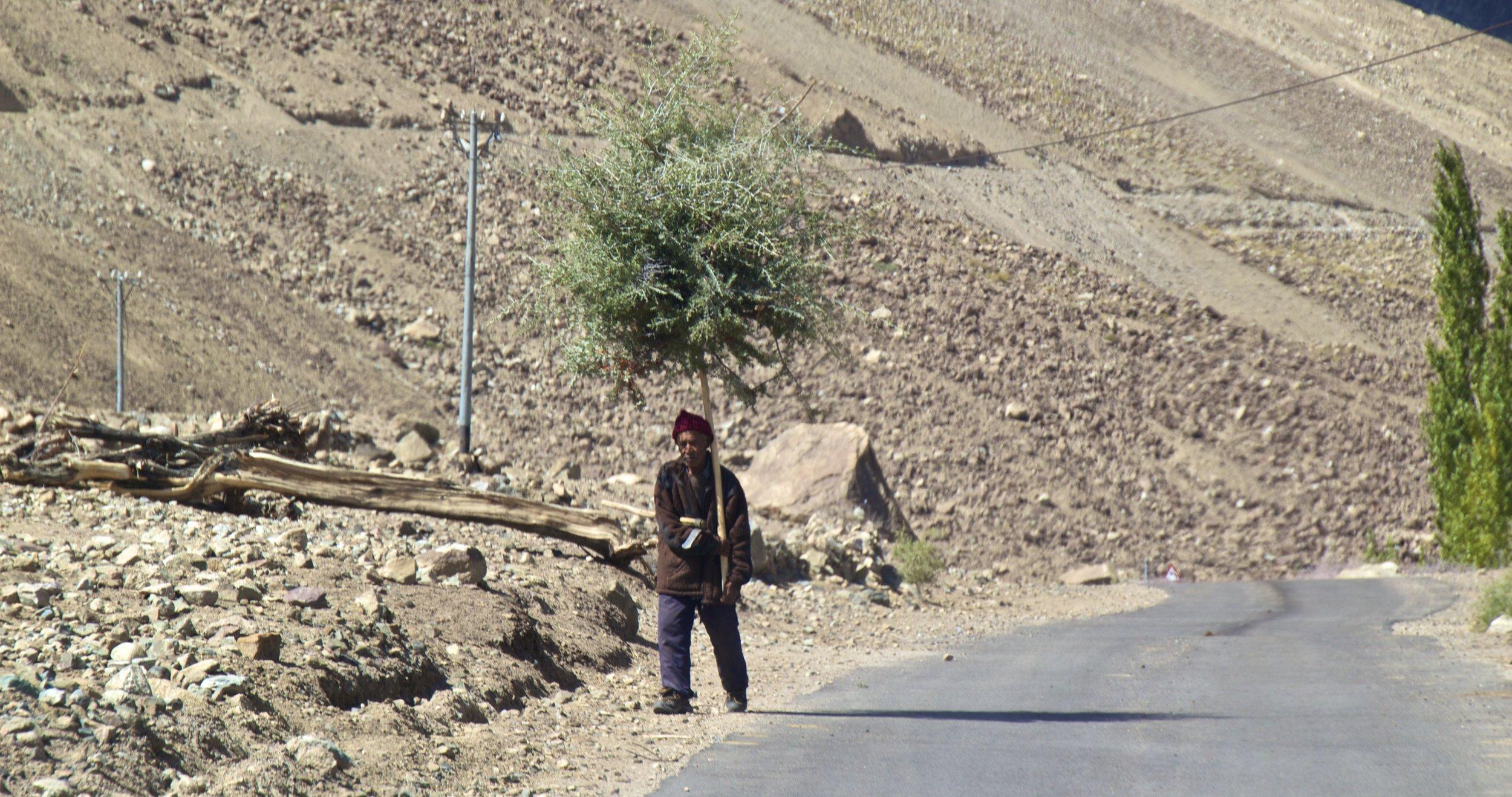 Nubra Valley Ladakh Kashmir Indian Himalayas Roads 10.jpg