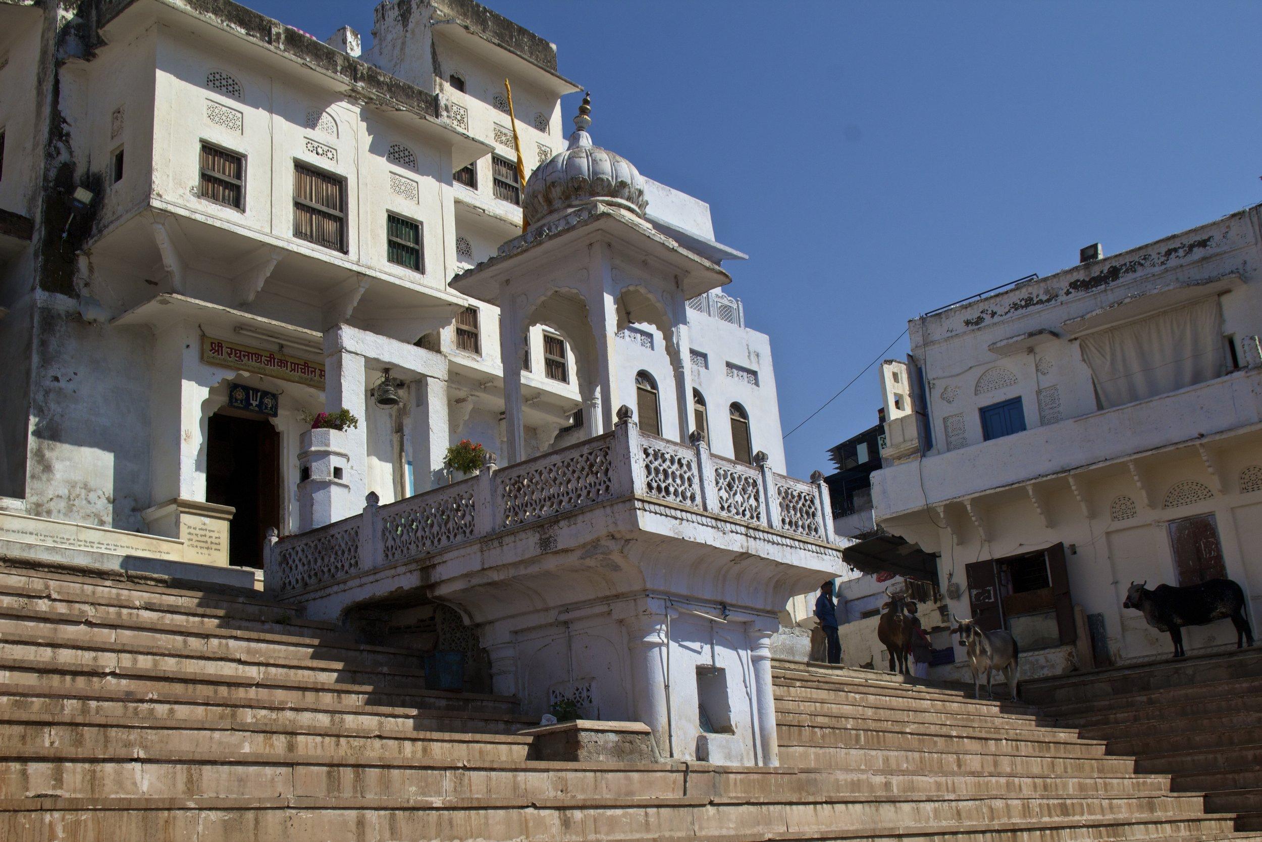 white city ghats pushkar rajasthan photography 4.jpg