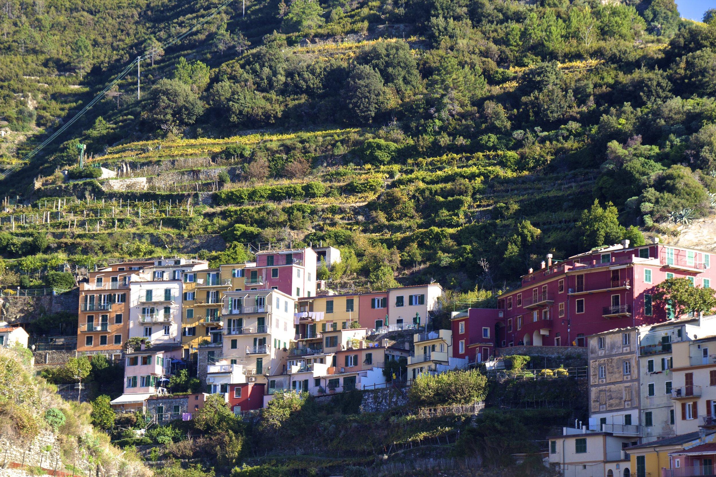 manarola cinque terre italy 5.jpg