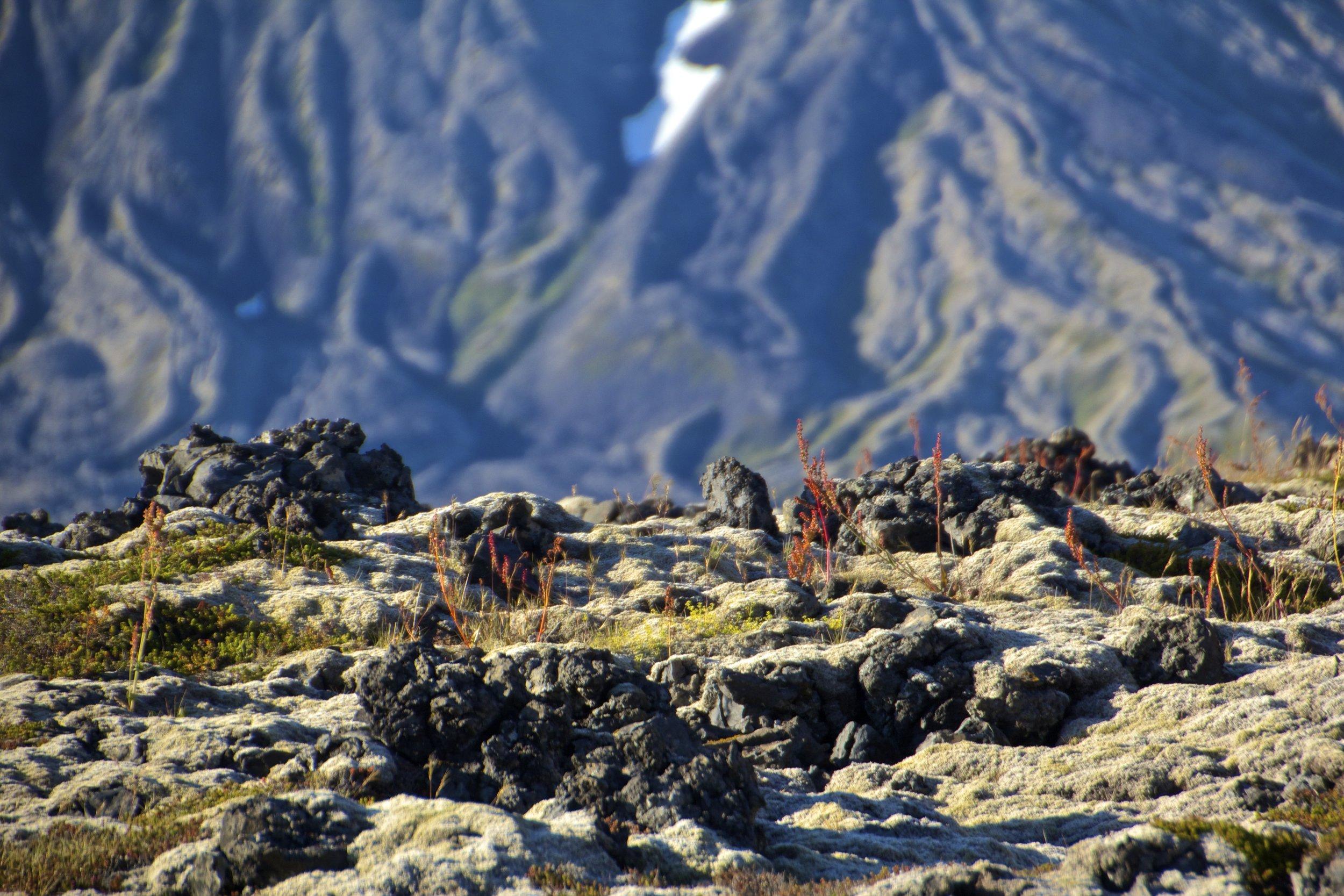 Snaefellsnes Iceland 9.jpg