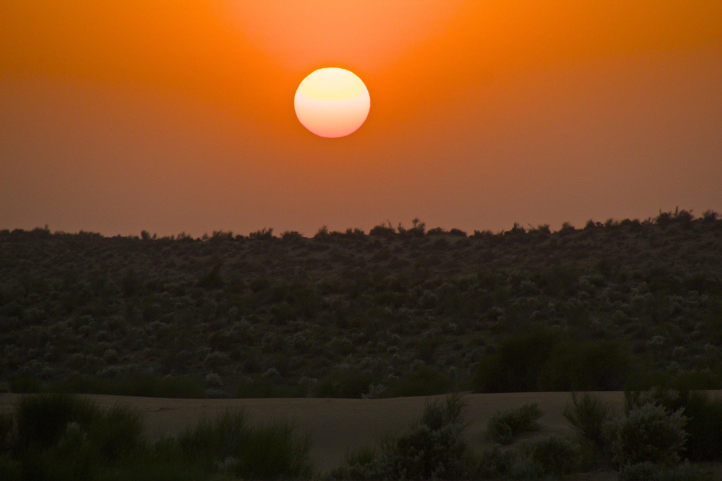 thar desert dunes rajasthan india photography camel safari 10.jpg