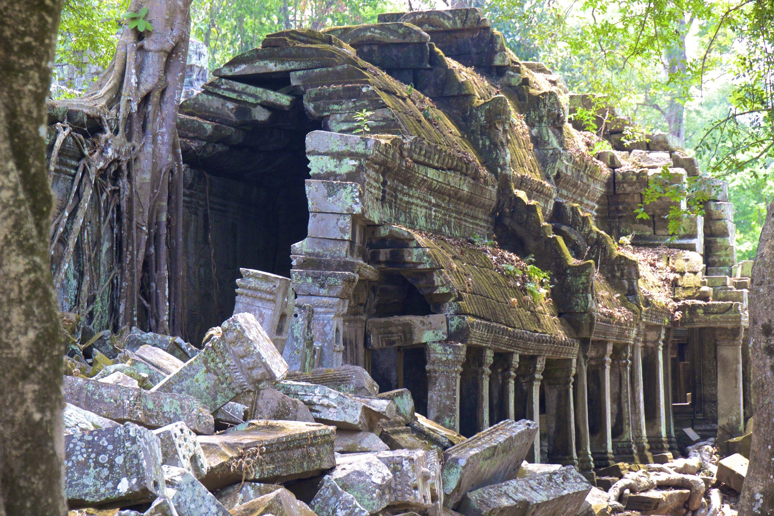 ta prohm siem reap cambodia 4.jpg