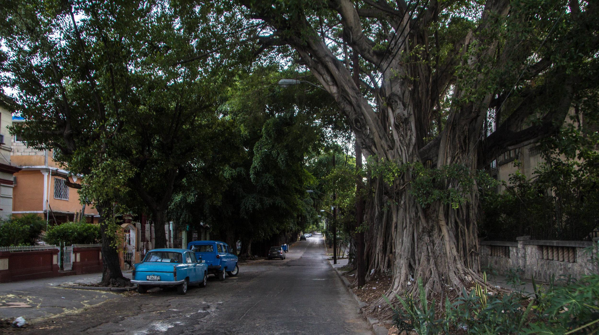 streets vedado havana cuba-1-2-2.jpg