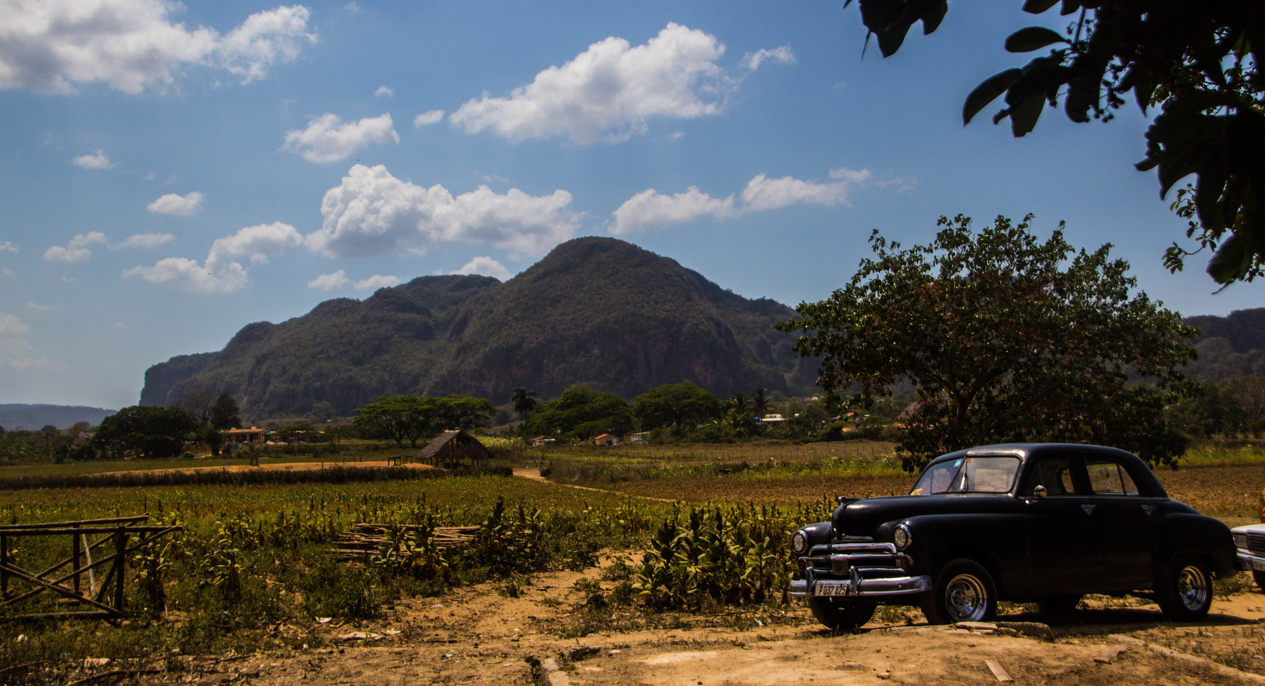 tobacco fields viñales cuba-1-3.jpg