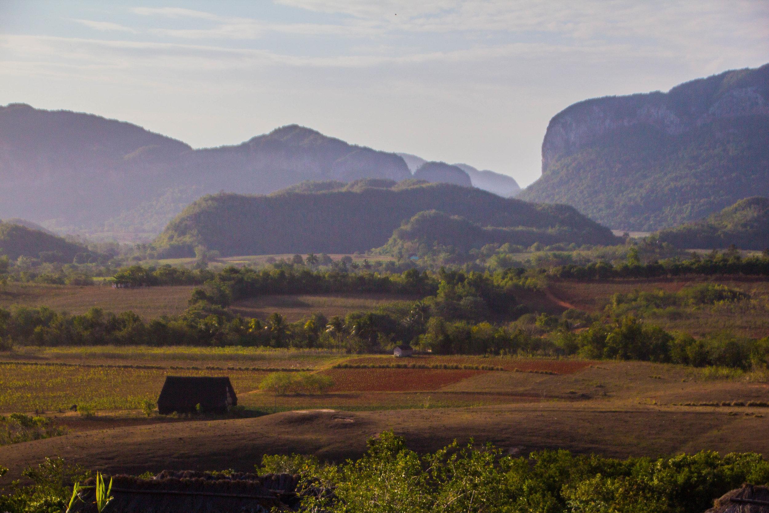 finca agroecological el paraiso restaurant viñales cuba-1-4-2.jpg