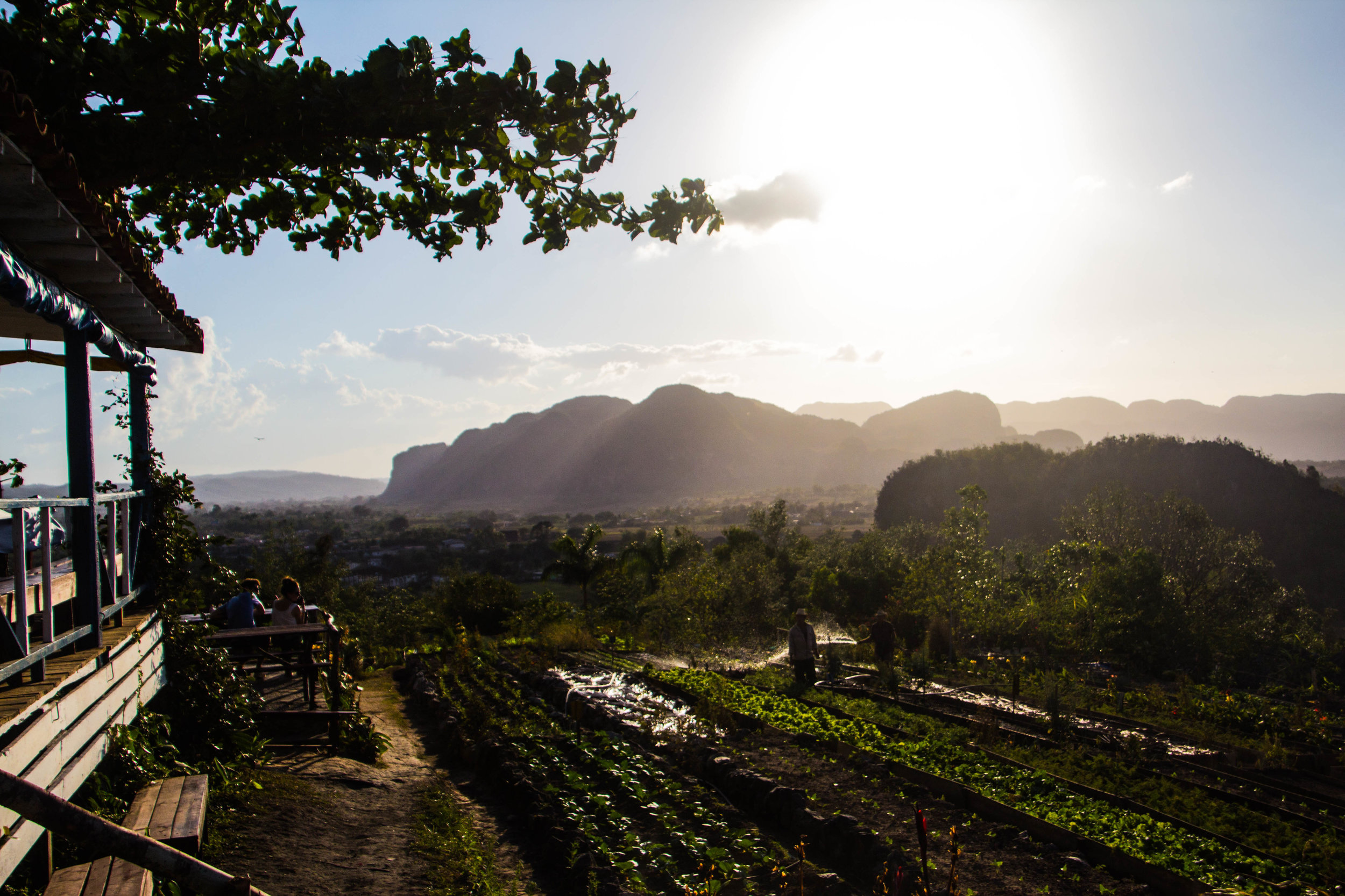 finca agroecological el paraiso restaurant viñales cuba-1-5-2.jpg