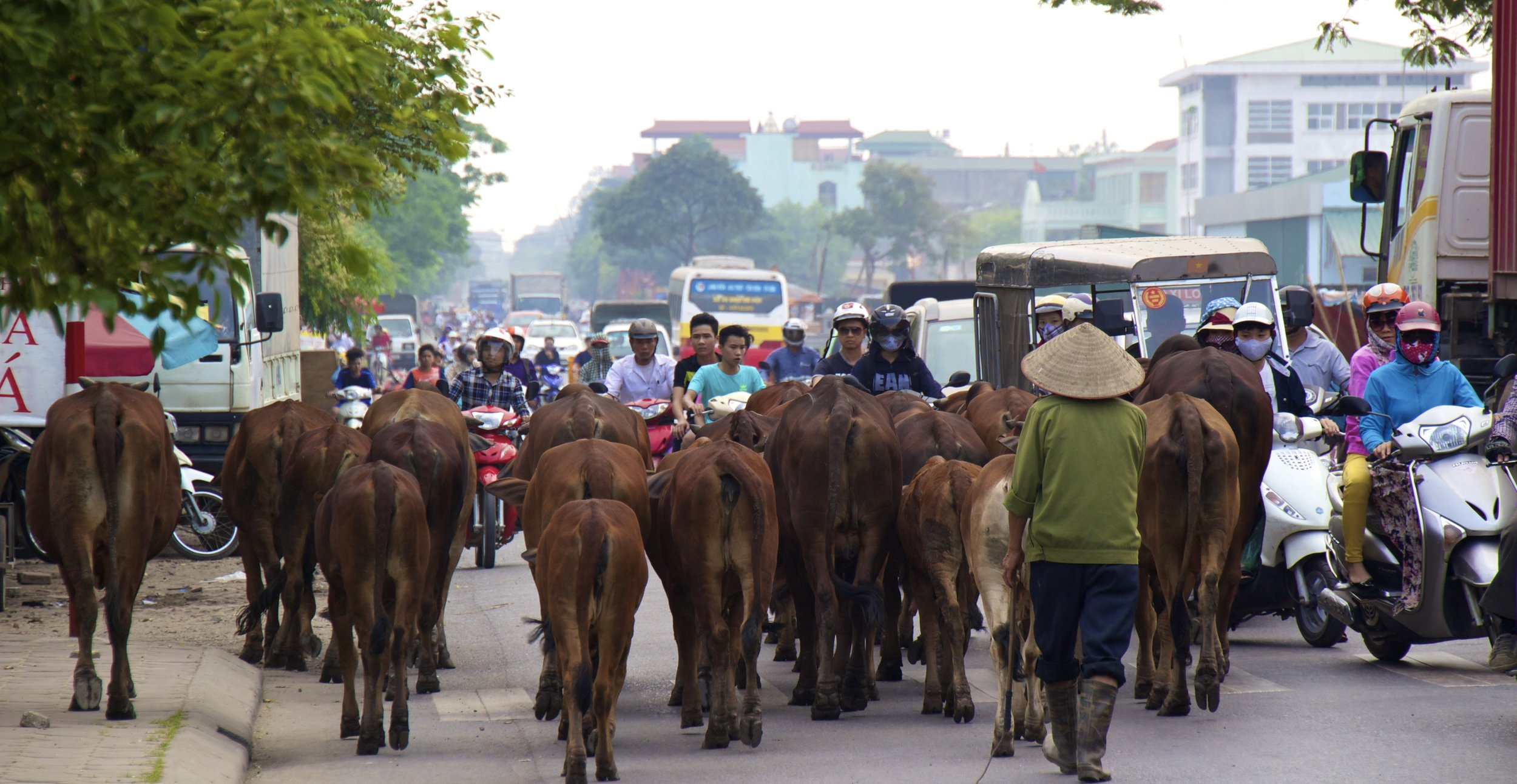 Bac Ninh Vietnam traffic.jpg