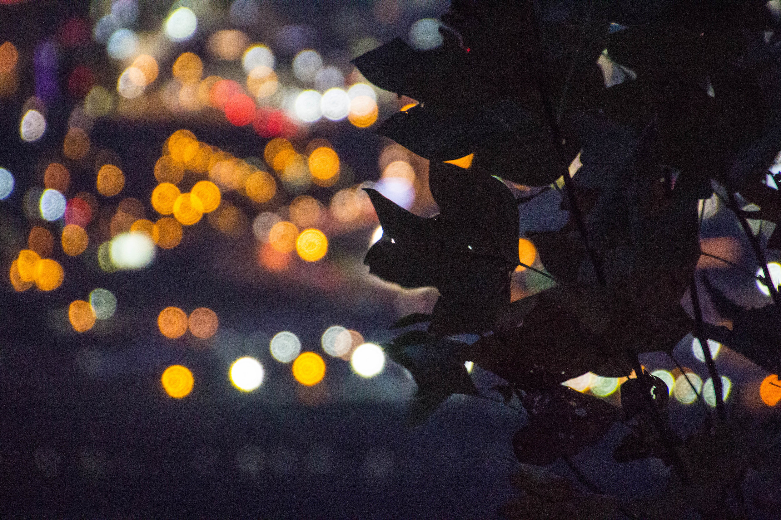 point-park-lookout-mountain-chattanooga-at-night-18.jpg