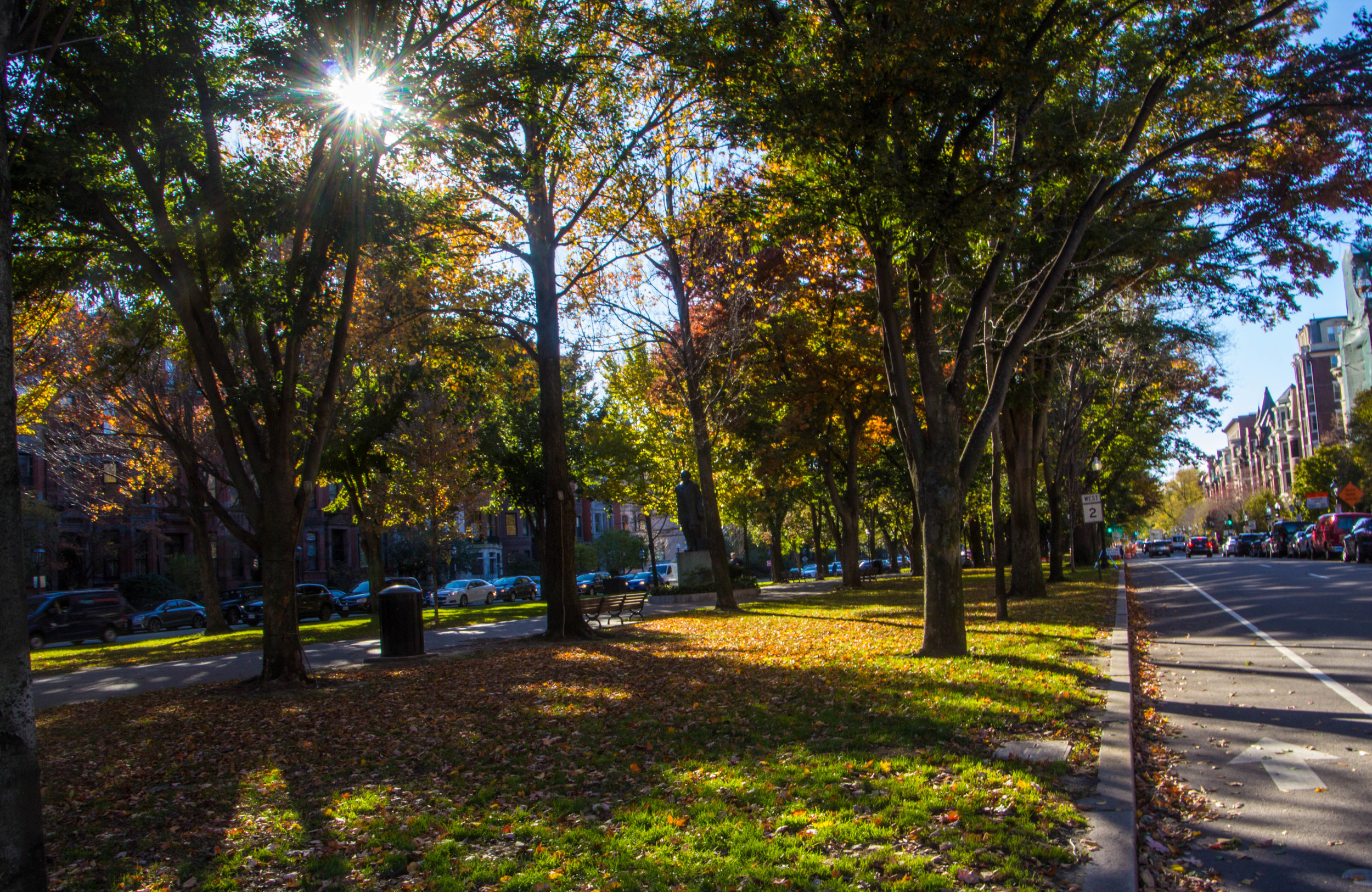 back-bay-boston-in-the-fall-photography-4.jpg