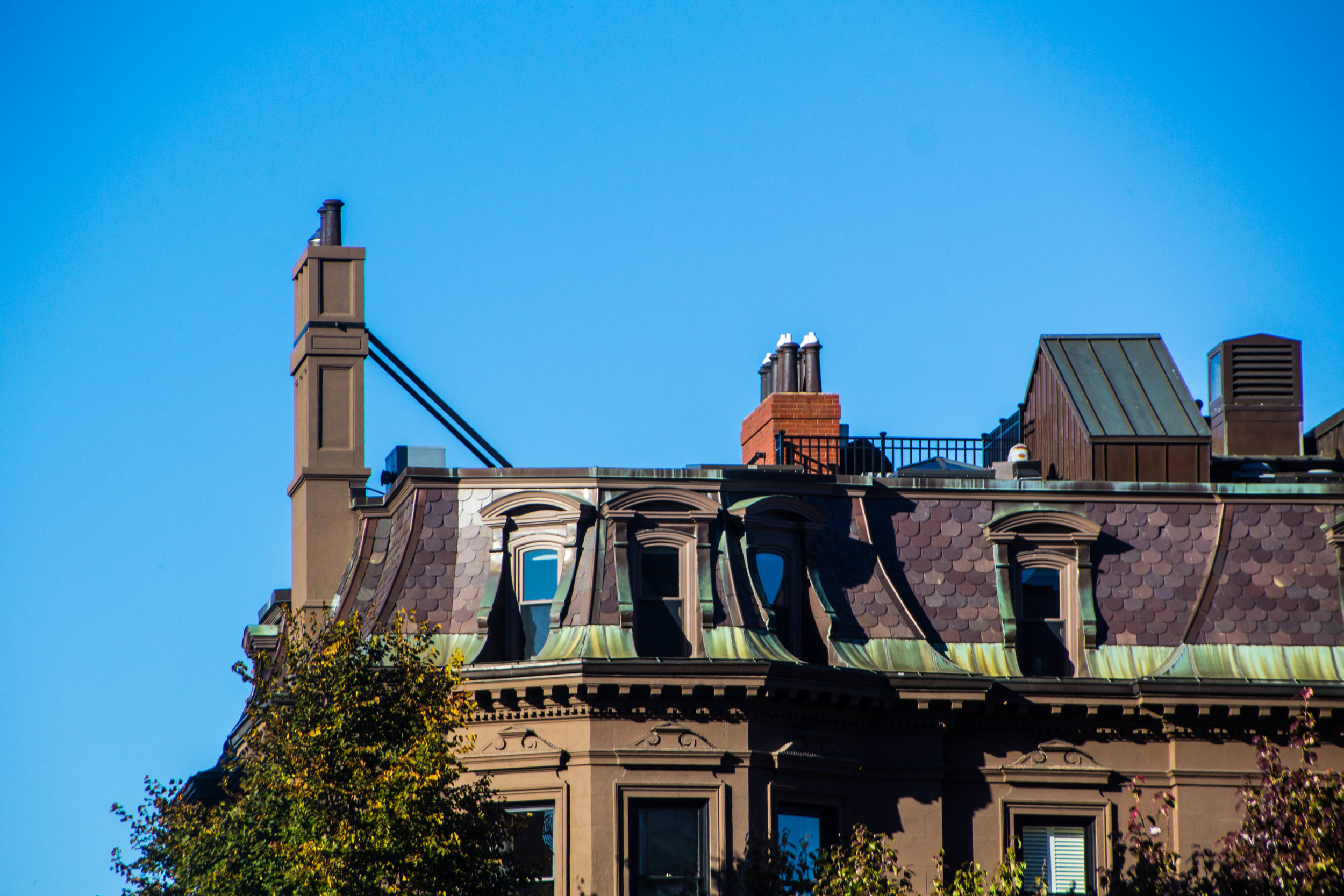 back-bay-boston-in-the-fall-photography-15.jpg