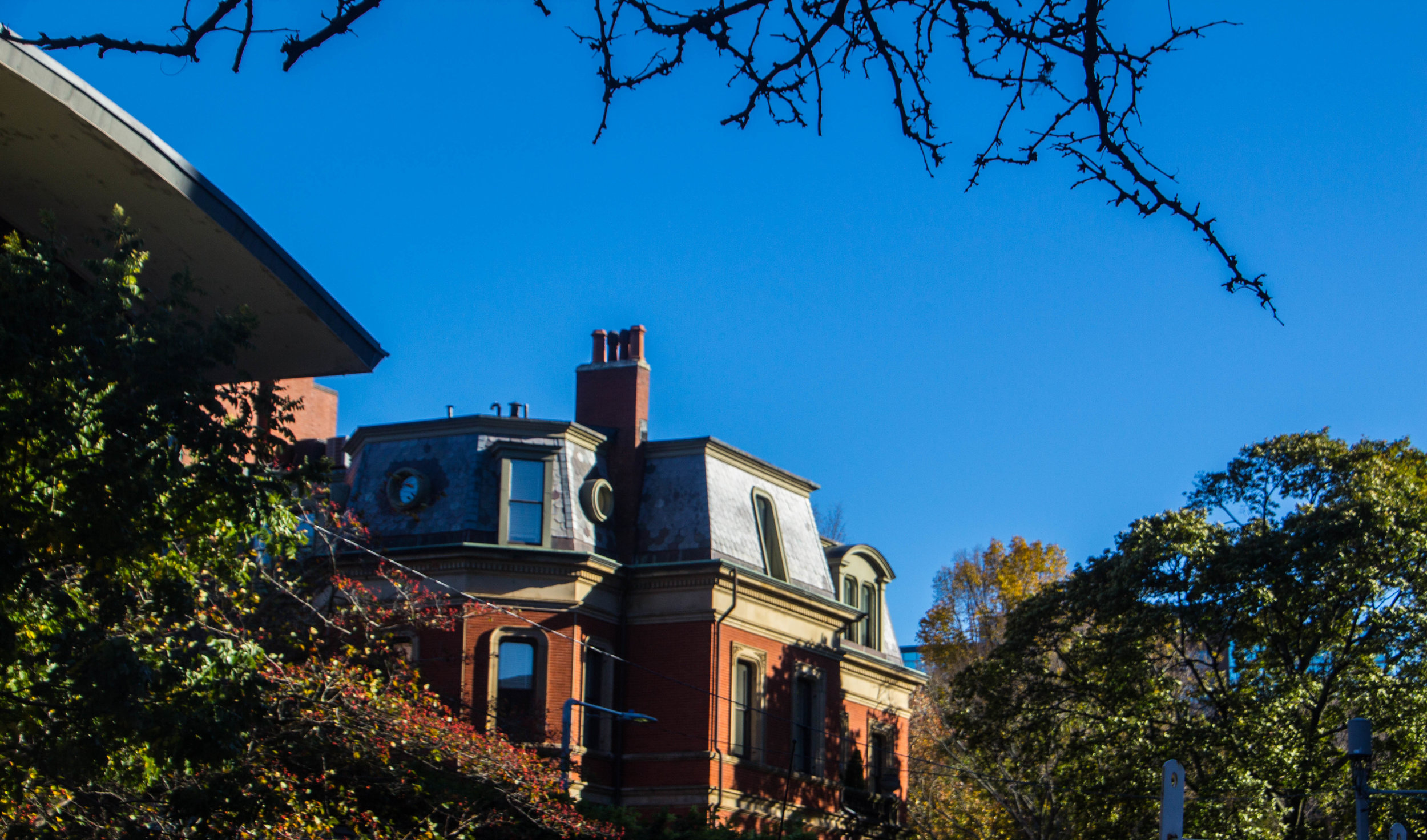 back-bay-boston-in-the-fall-photography-14.jpg