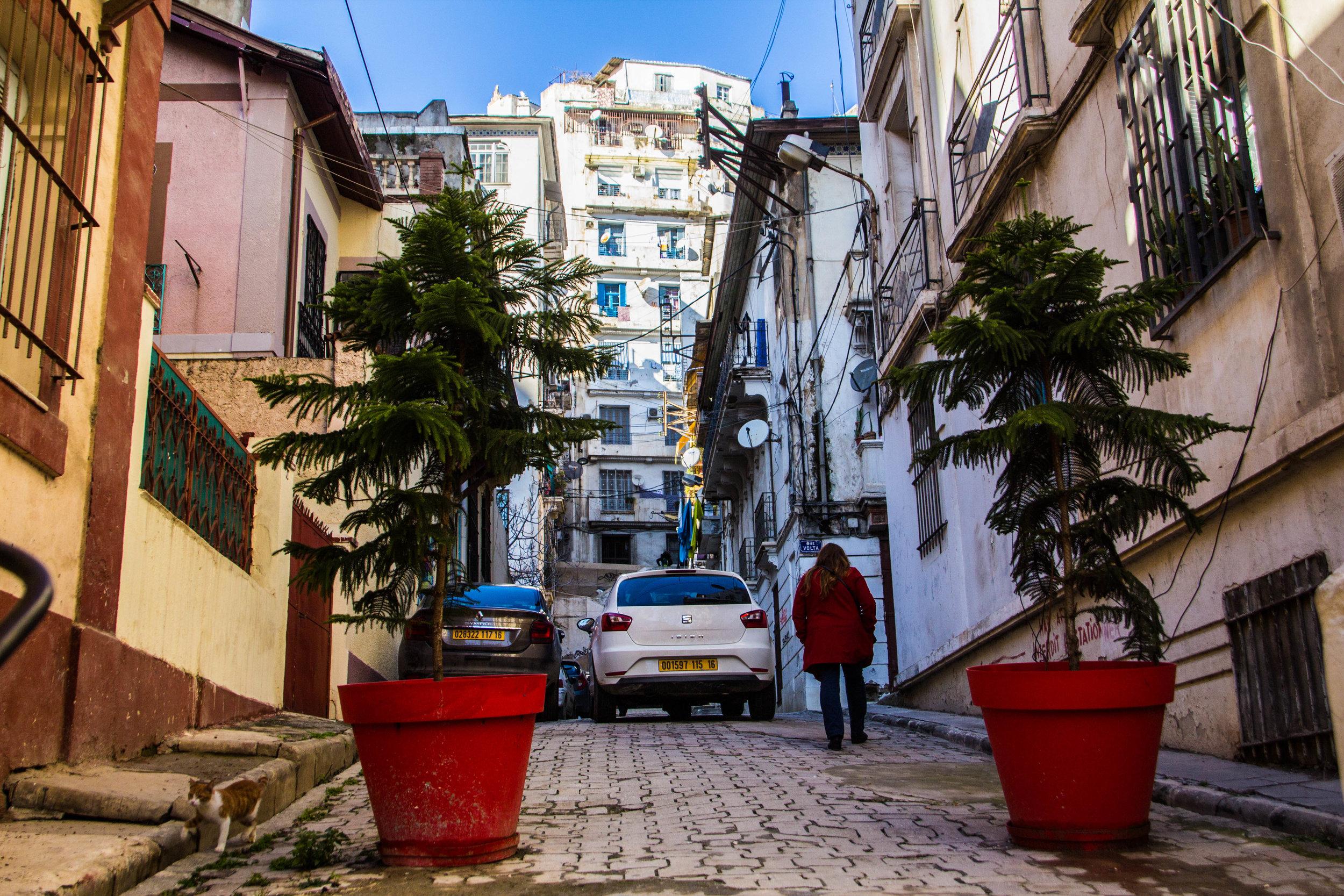 streets-algiers-algeria-19.jpg