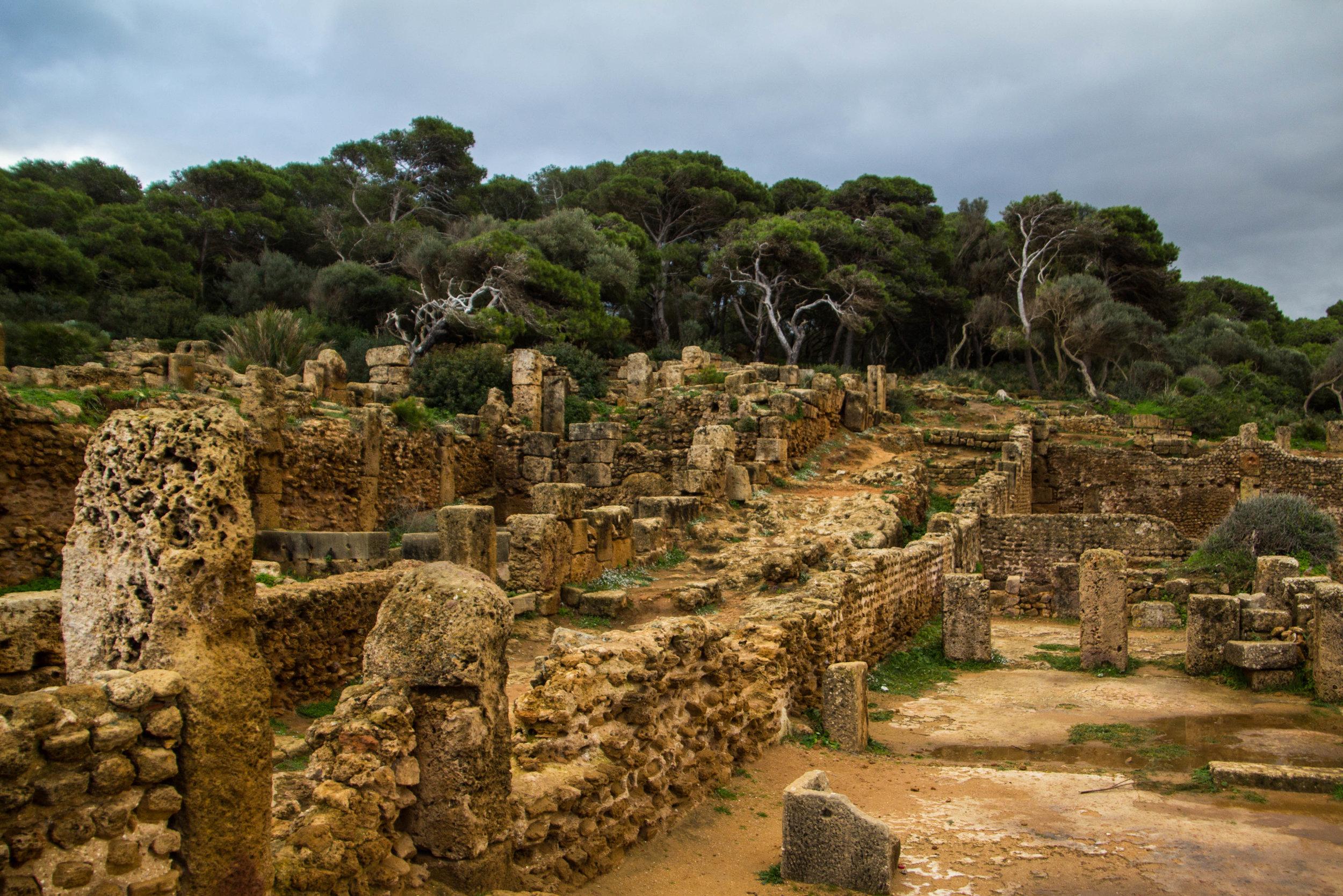 tipiza-roman-ruins-algeria-16.jpg