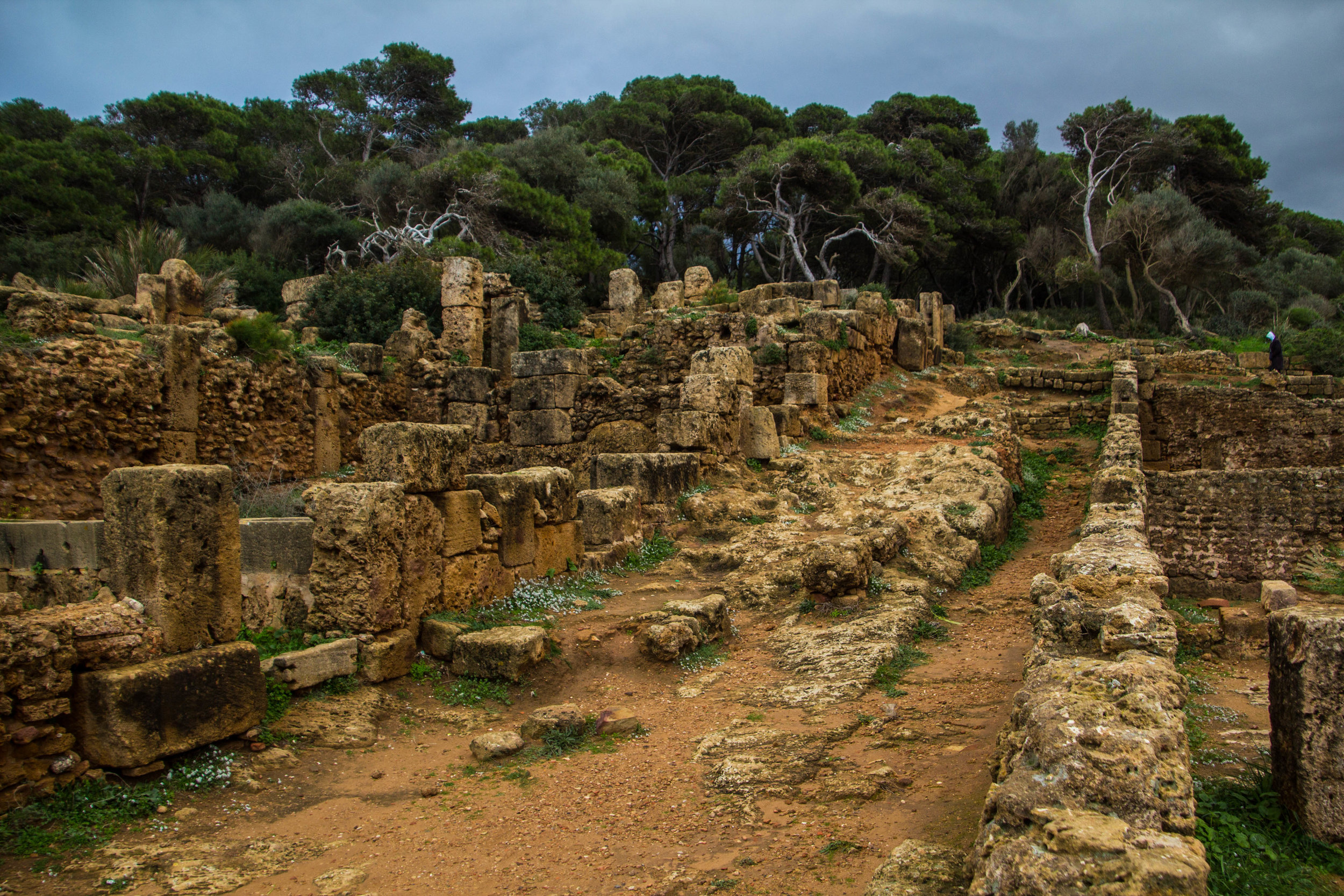 tipiza-roman-ruins-algeria-17.jpg