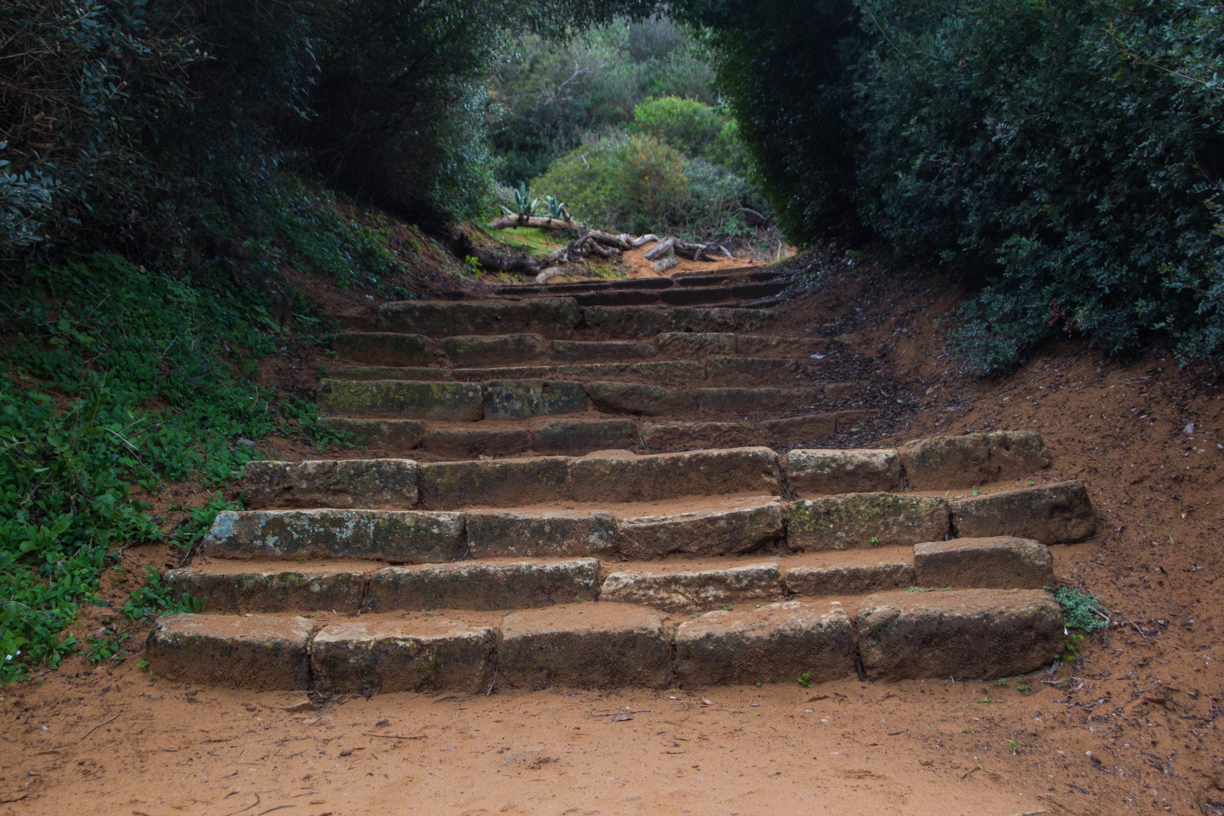 tipiza-roman-ruins-algeria-22.jpg