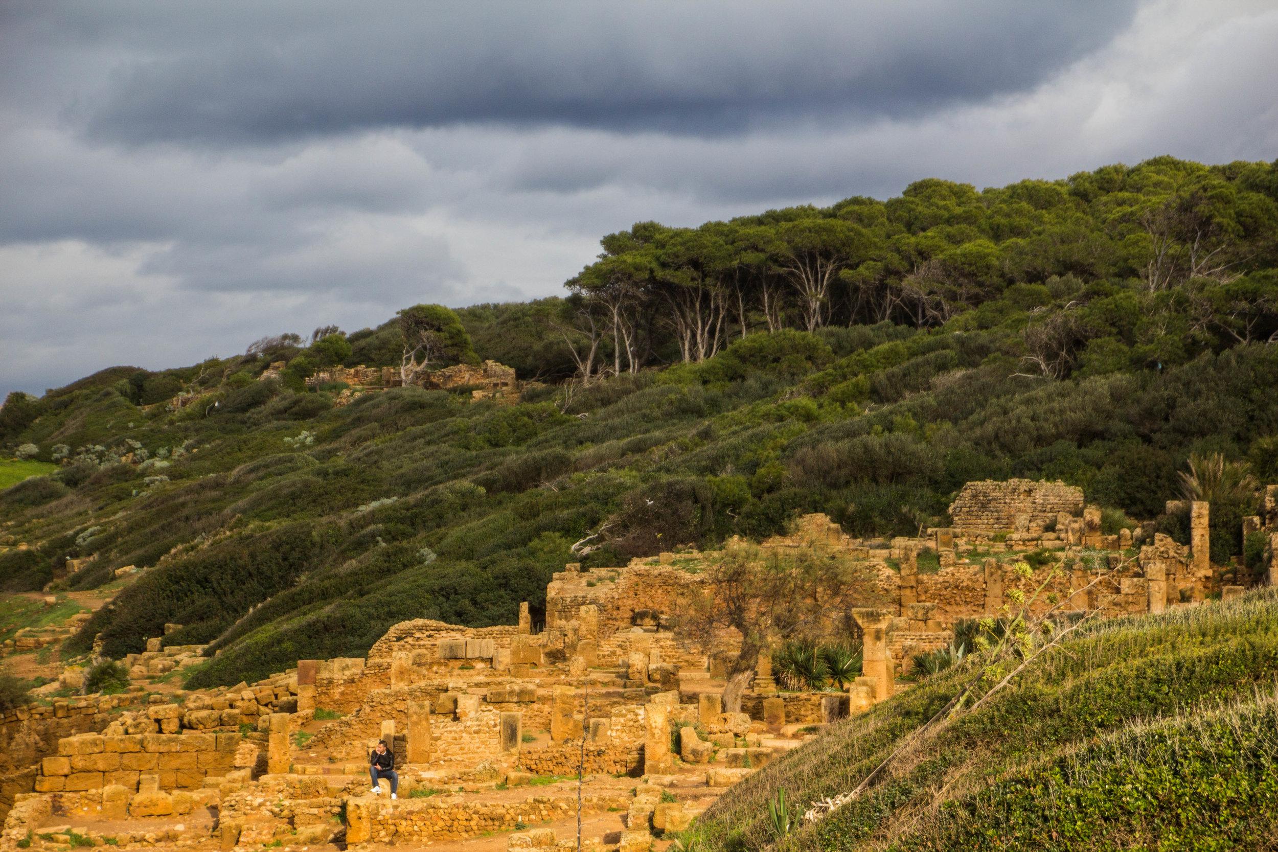 tipiza-roman-ruins-algeria-24.jpg