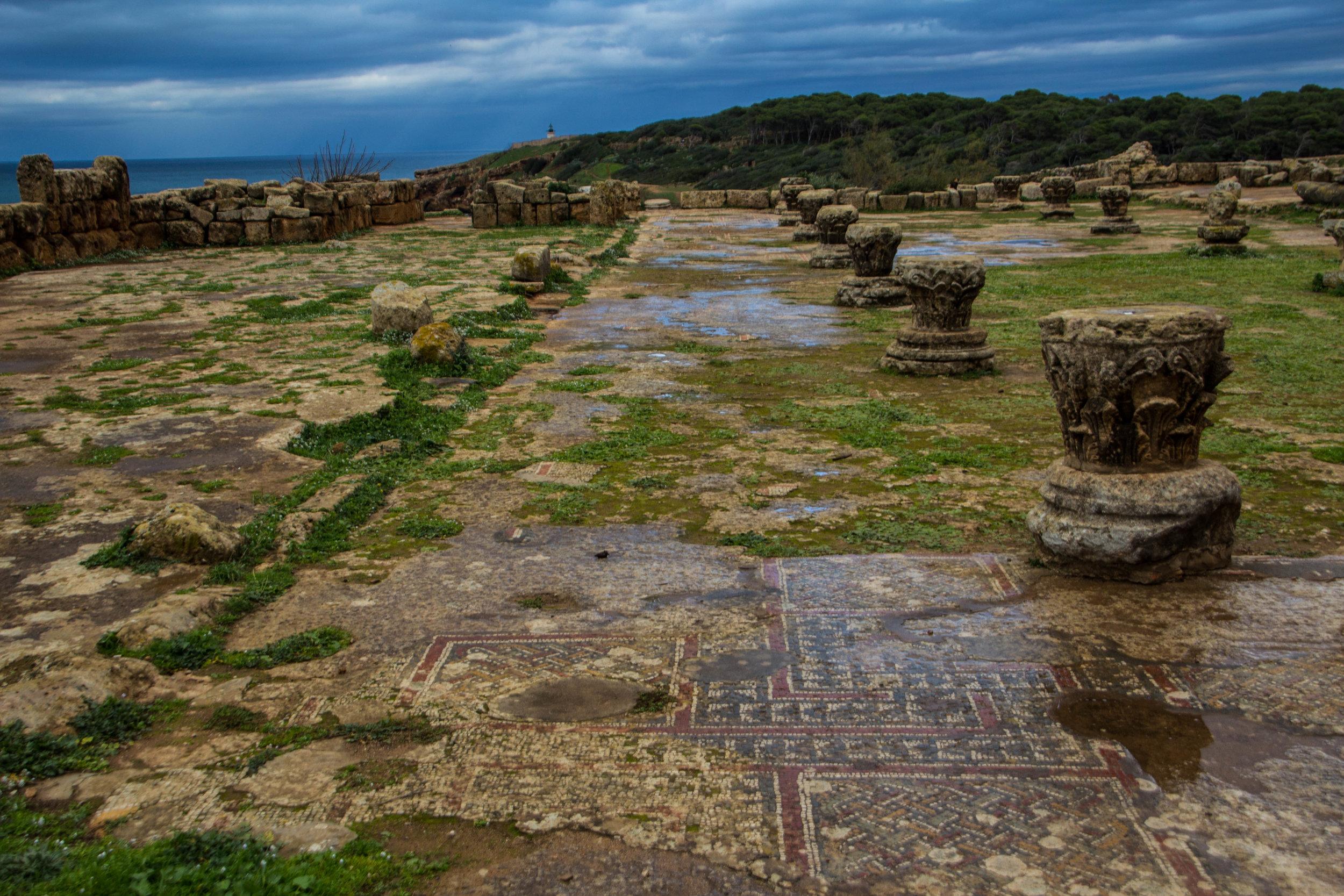 tipiza-roman-ruins-algeria-50.jpg