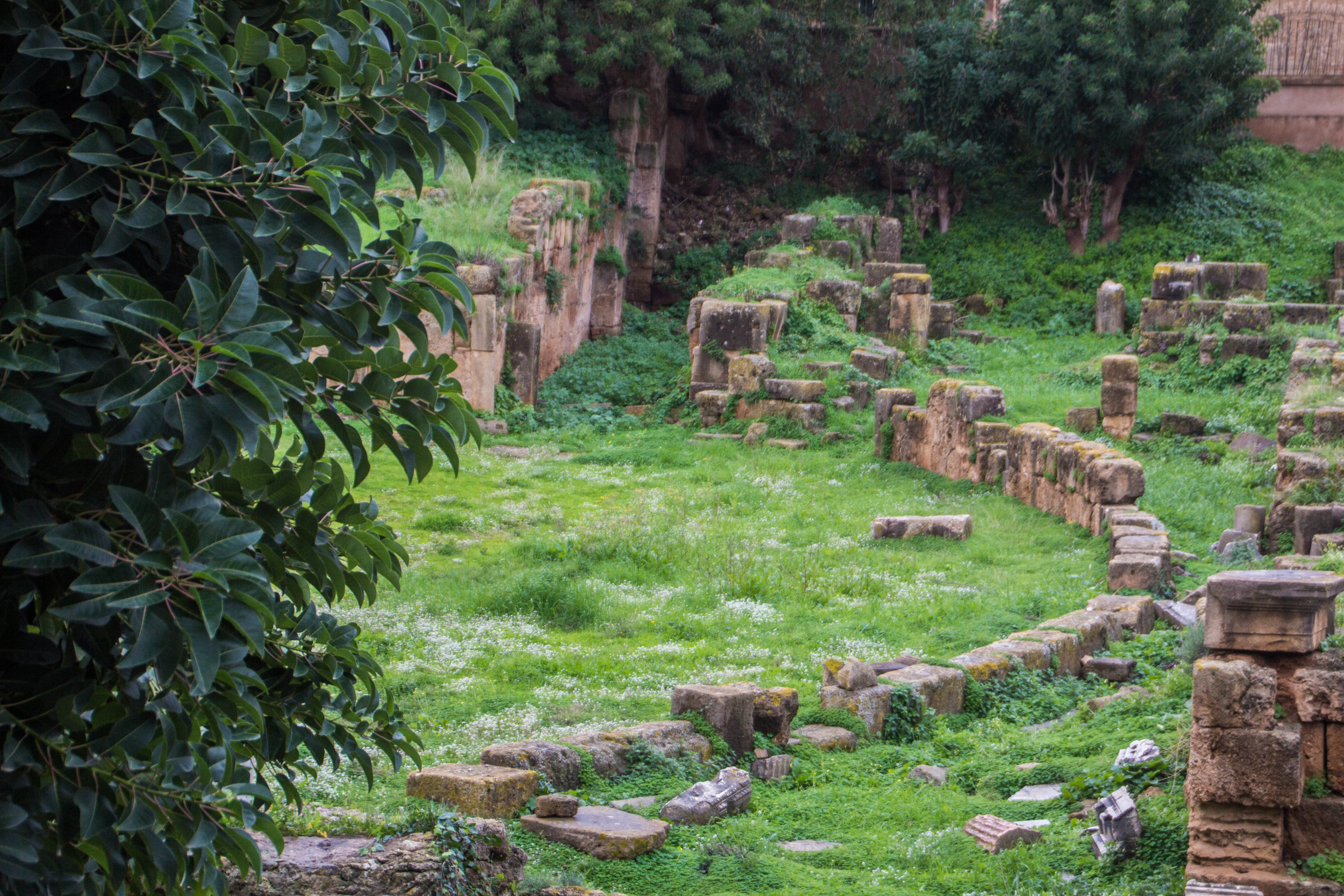 cherchelle-roman-ruins-algeria-43.jpg