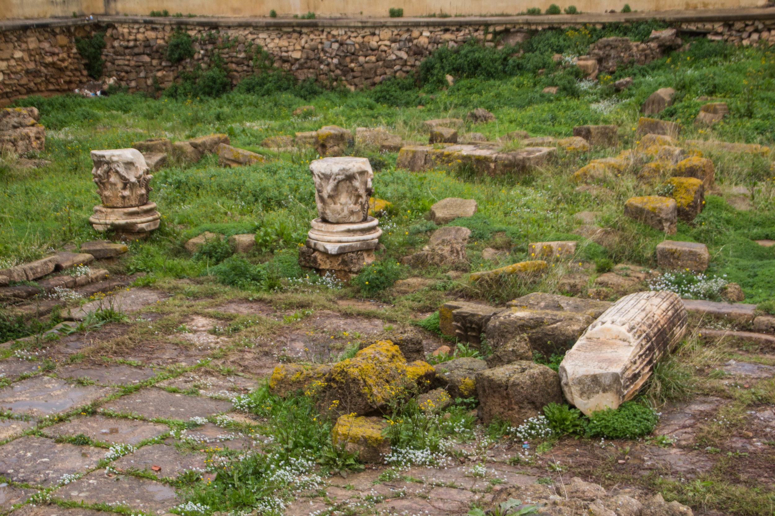 cherchelle-roman-ruins-algeria-47.jpg