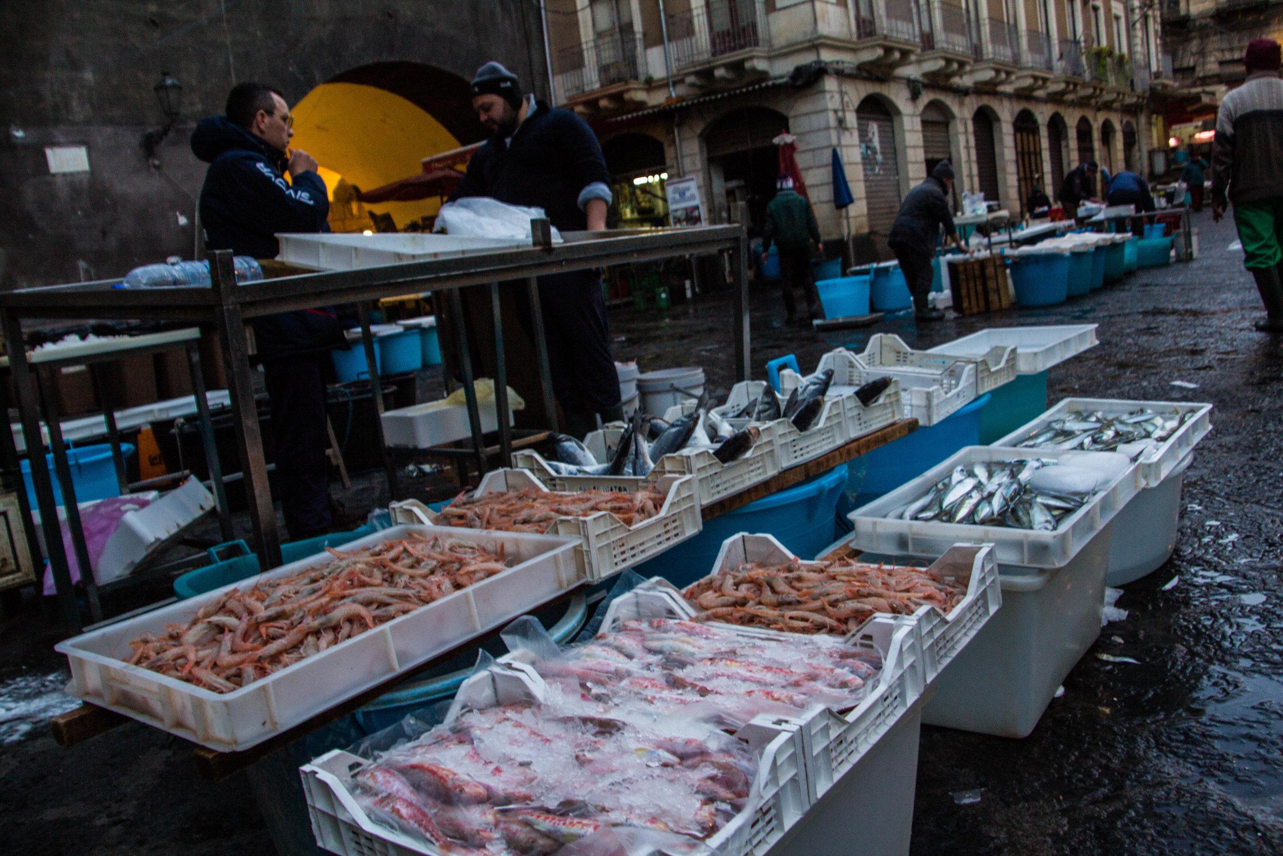 fish-market-catania-sicily-20.jpg