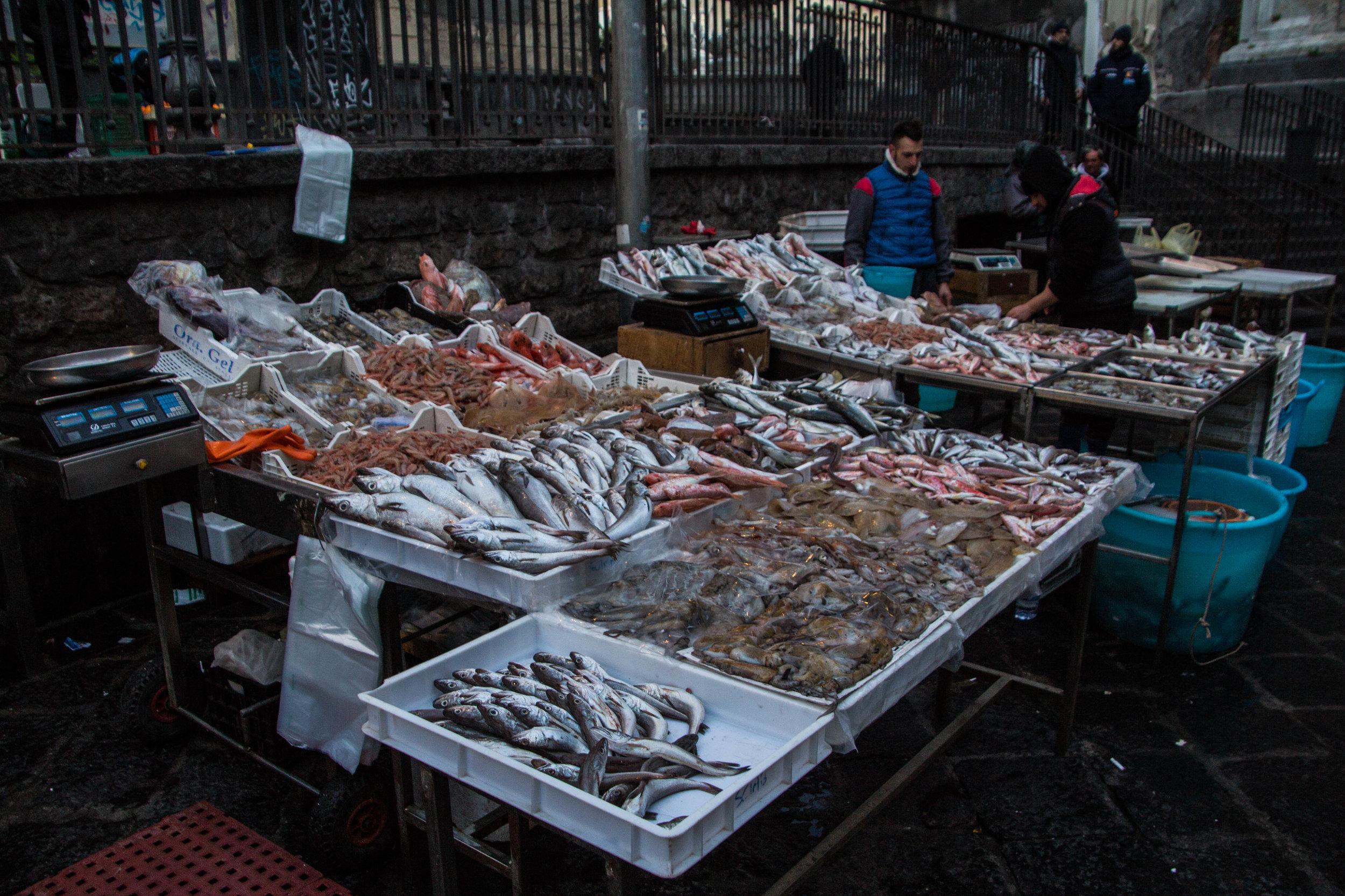 fish-market-catania-sicily-23.jpg