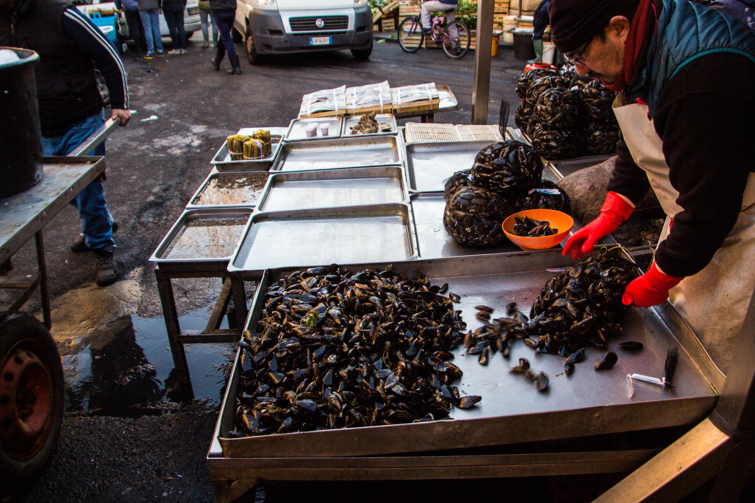 fish-market-catania-sicily-49.jpg